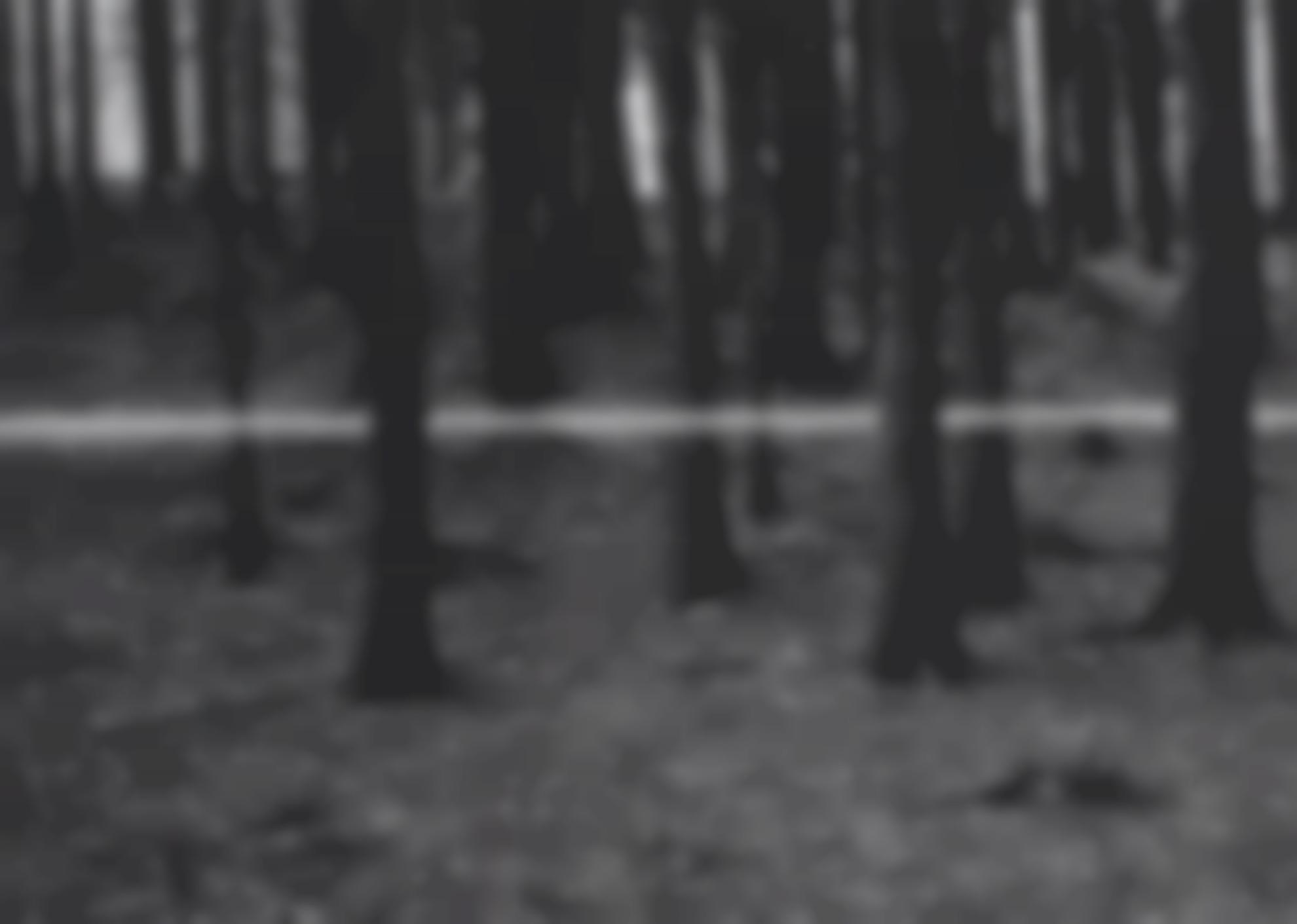 Roman Signer-Large Forest With Bullet-1978