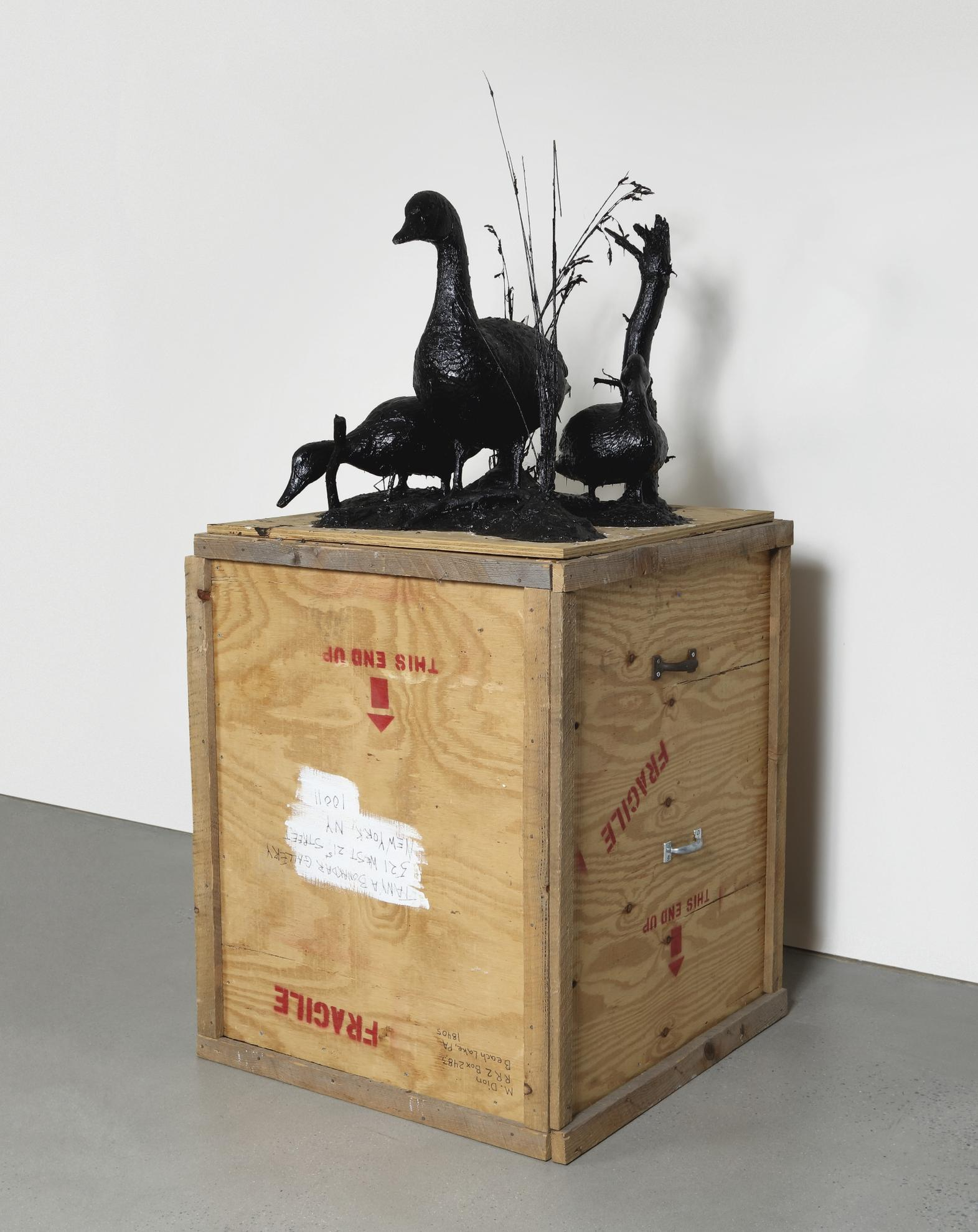 Mark Dion-Waterfowl 'Duck, Duck, Goose'-2002