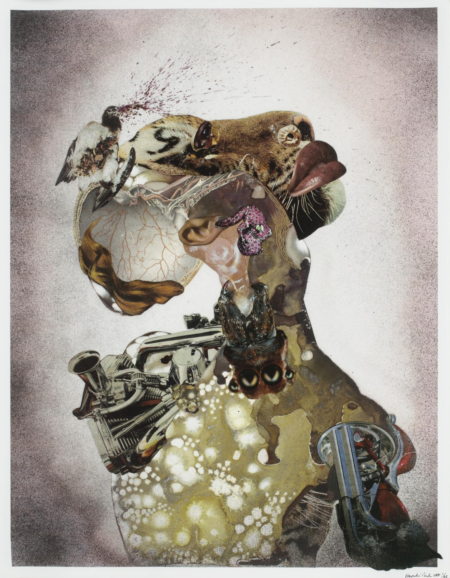 Wangechi Mutu-Homeward Bound-2009