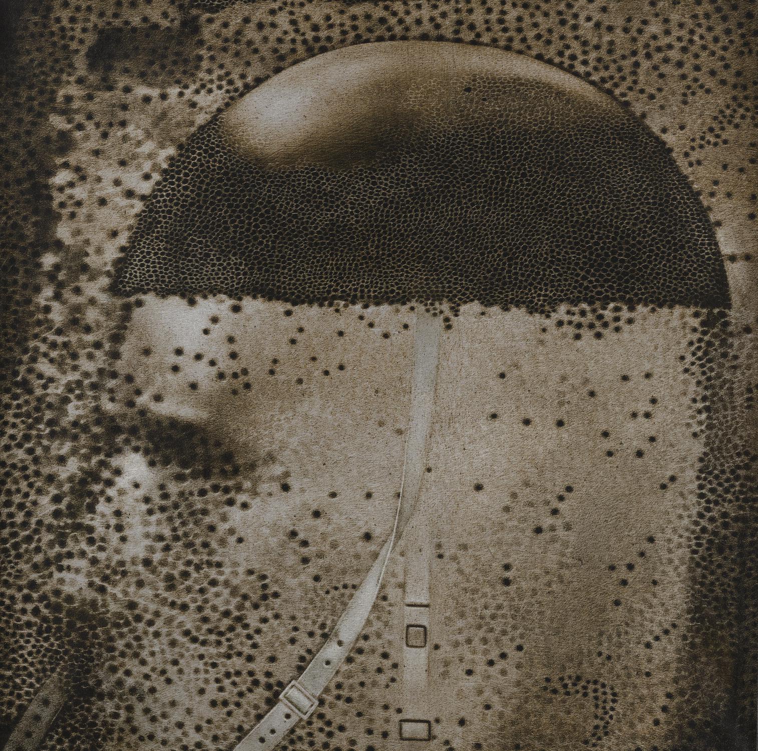 Rameshwar Broota-Helmet-2000
