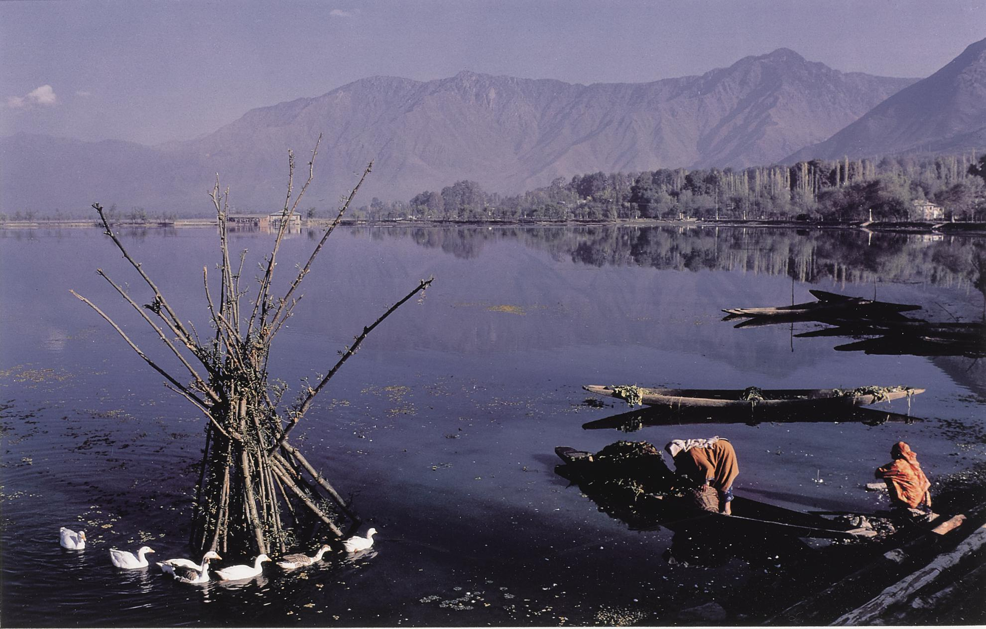 Raghubir Singh - Two Women Collecting Lotus Leaves For Cattle Fodder, Dal Lake, Kashmir, India-1982