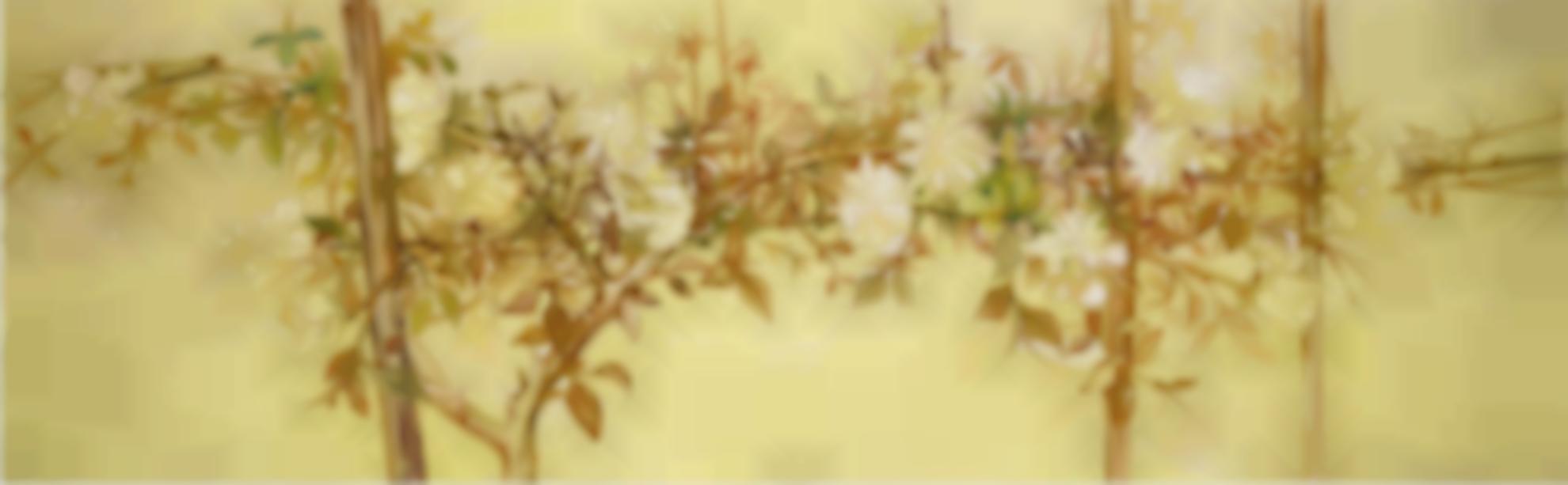 Edward Middleditch - Yellow Roses-1955