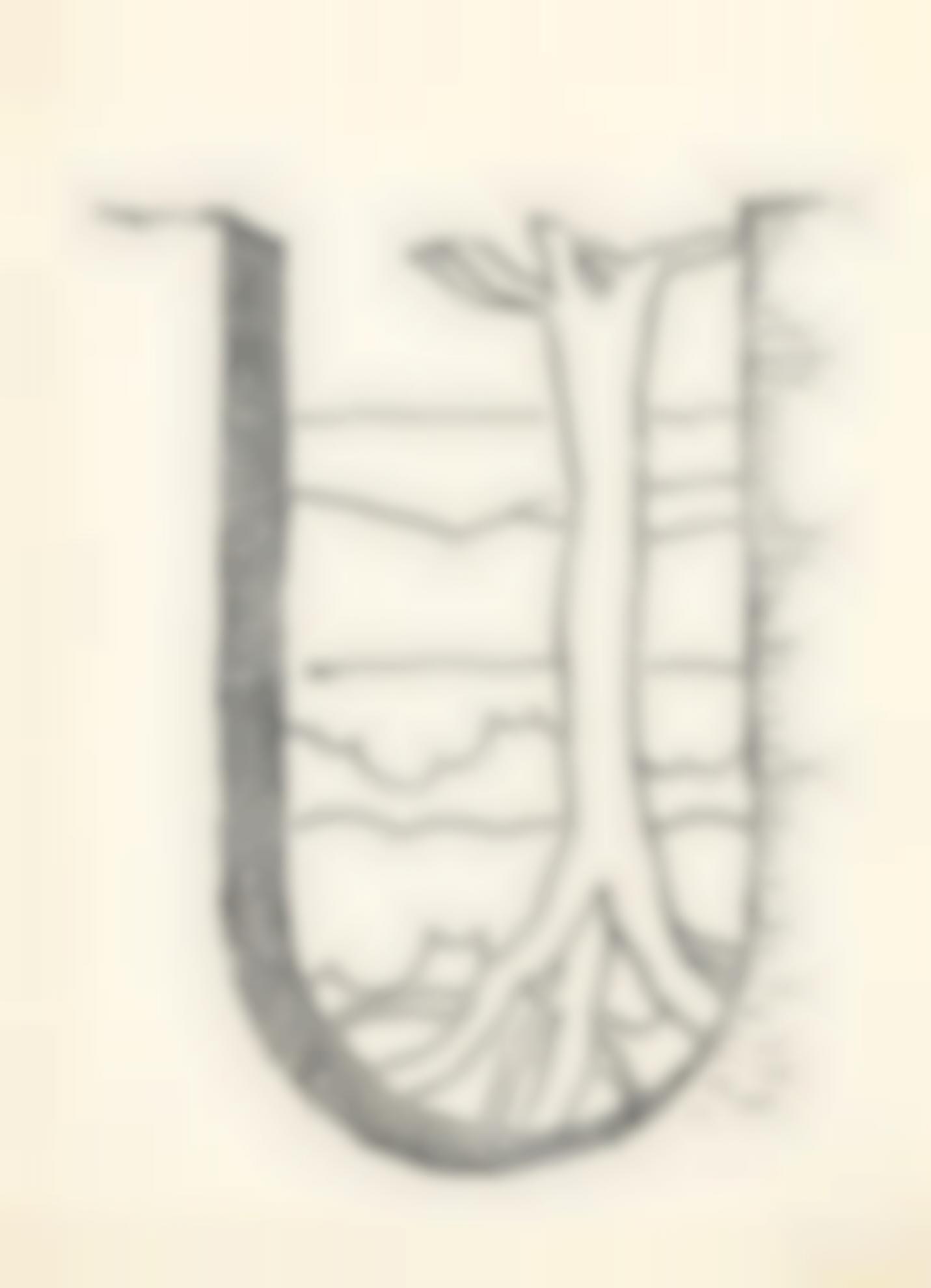 Man Ray-U-1947