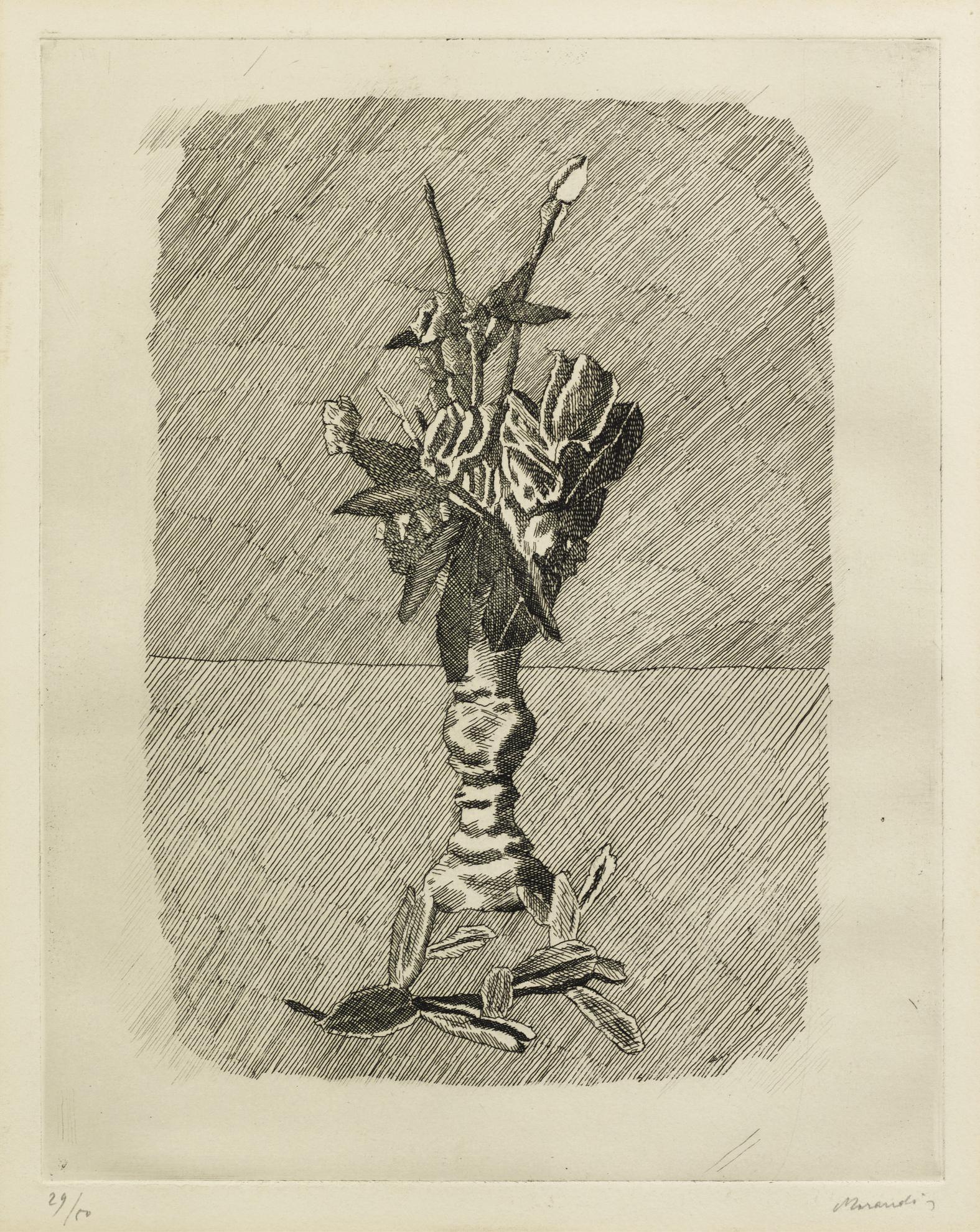 Giorgio Morandi-Rose In Boccio In Un Vaso (V. 88)-1931