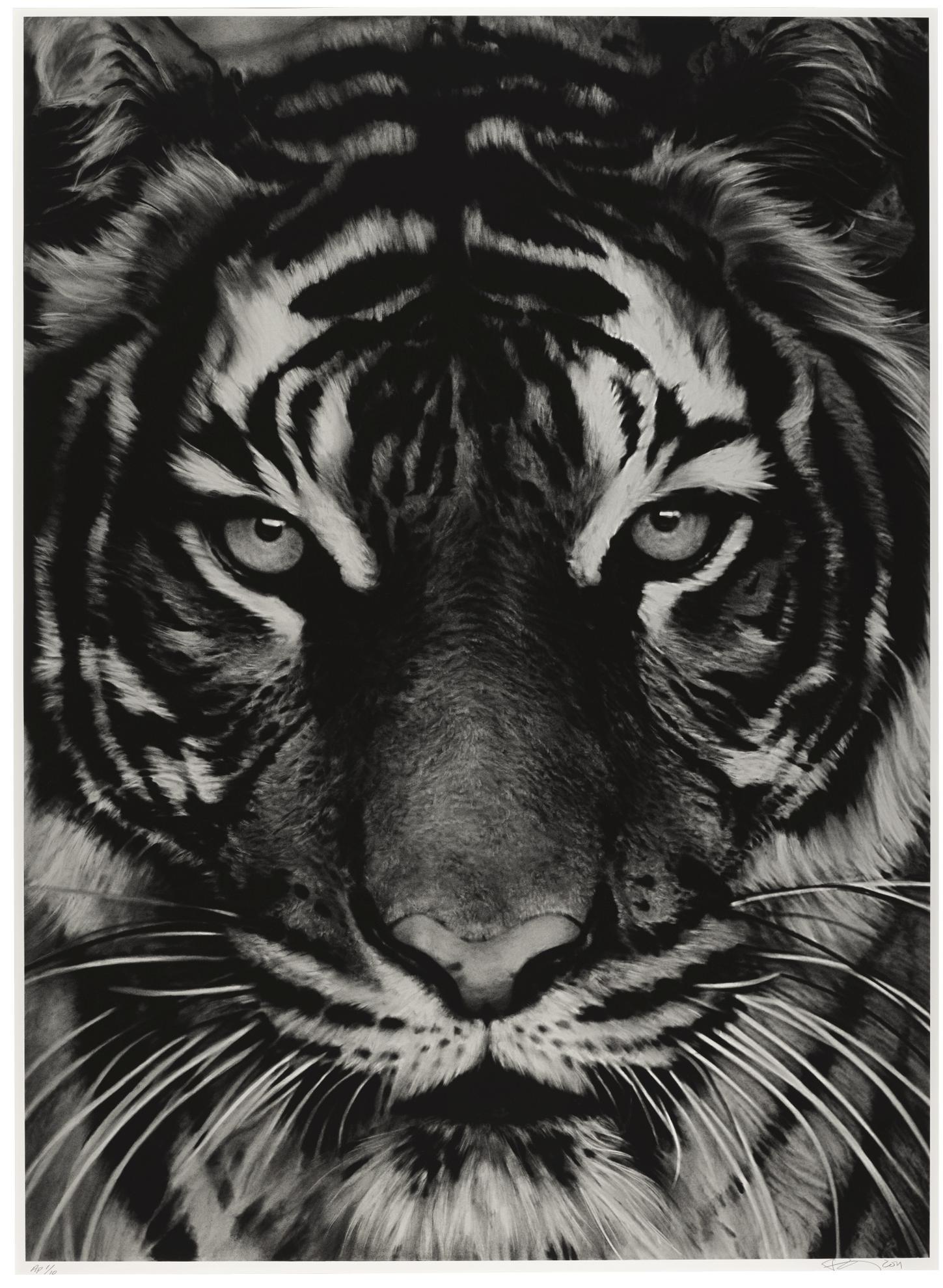 Robert Longo-Untitled (Tiger 2)-2011