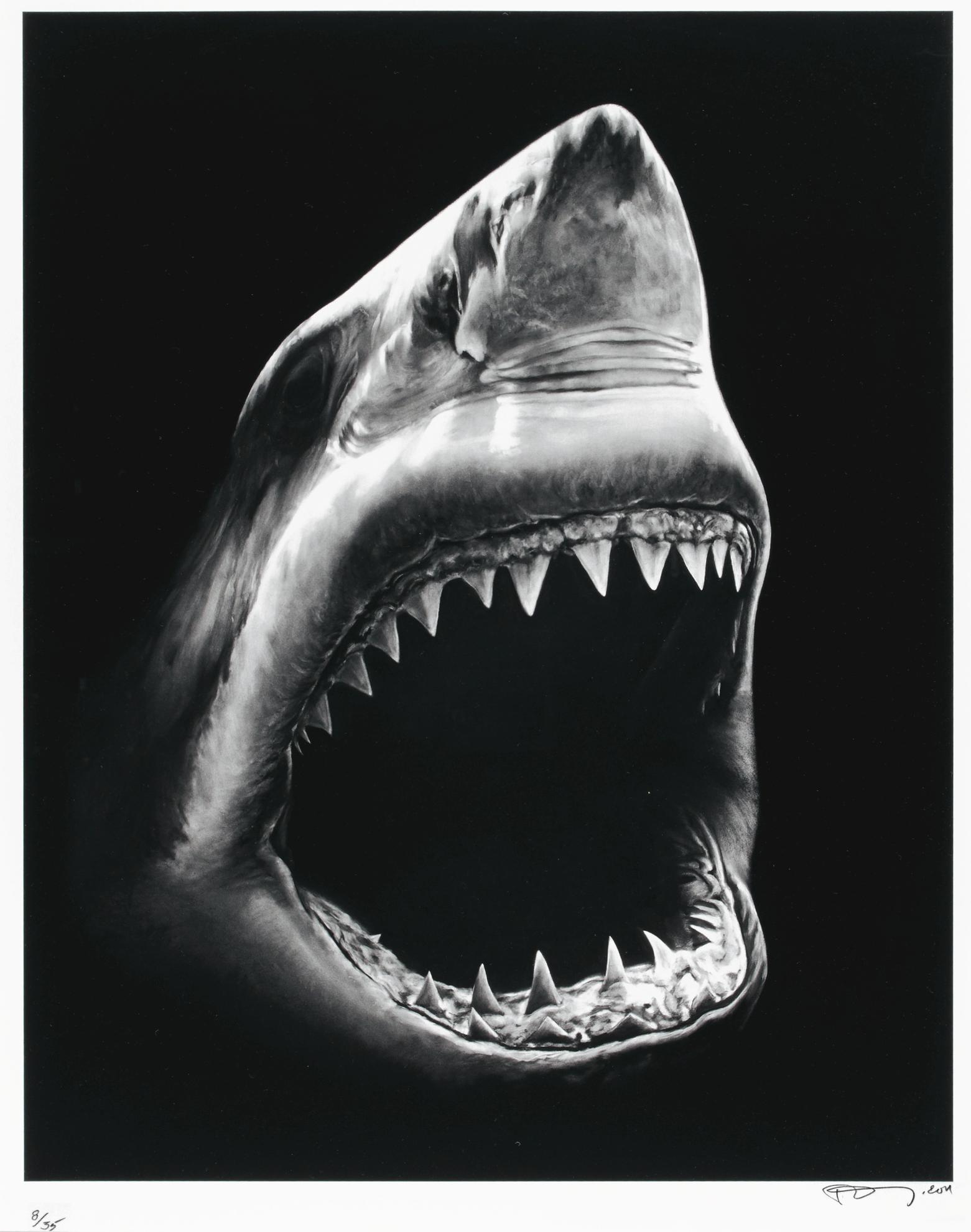 Robert Longo-Russian Bomb / Semipalatinsk; Spanish Blood / Lions Gate; Untitled (Shark 5); And Untitled (Ulysses)-2012
