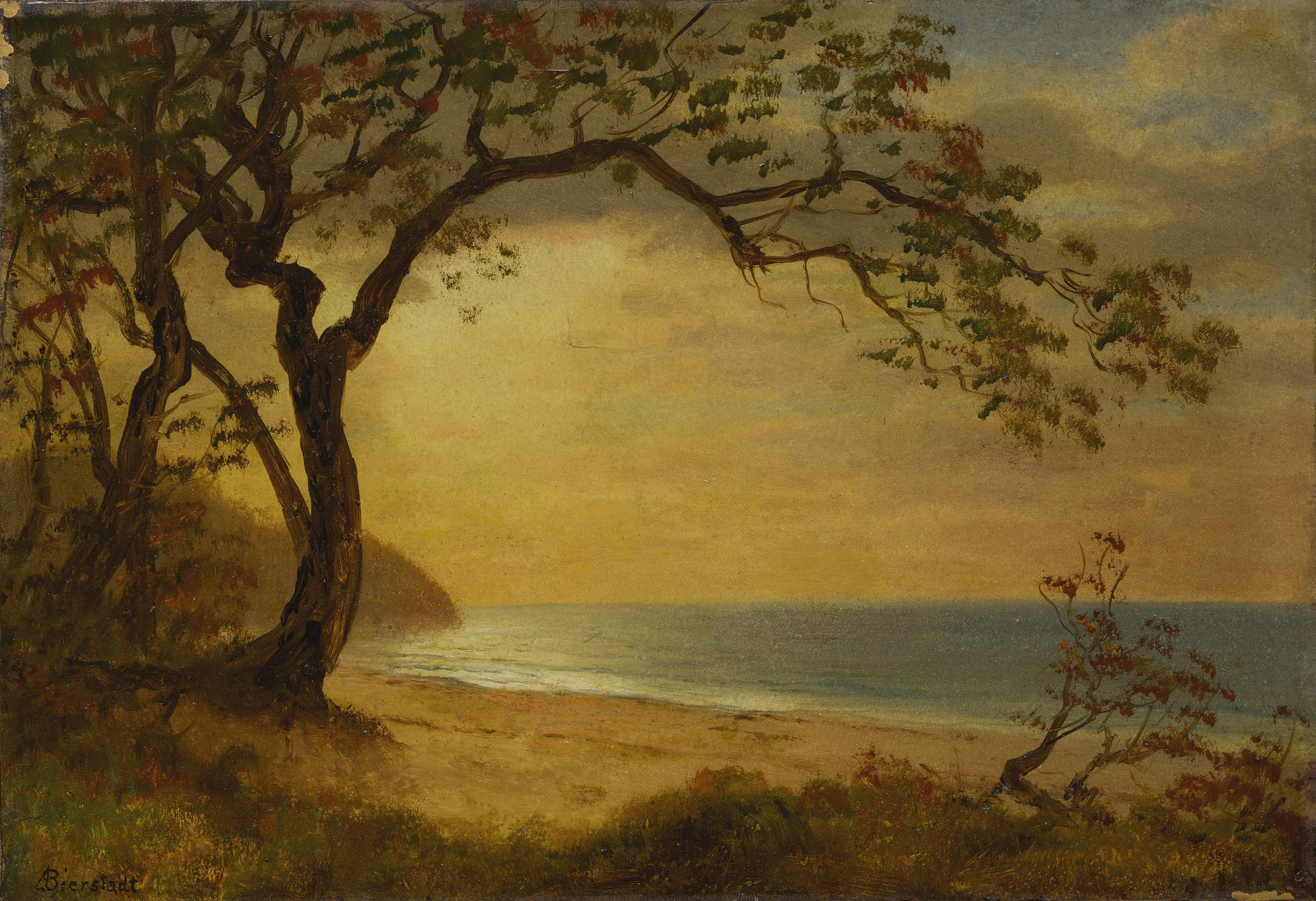 Albert Bierstadt - California Coast-