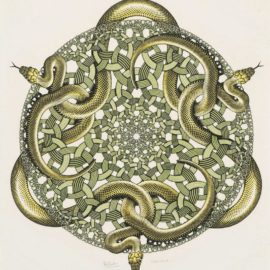 Maurits Cornelis Escher-Snakes-1969