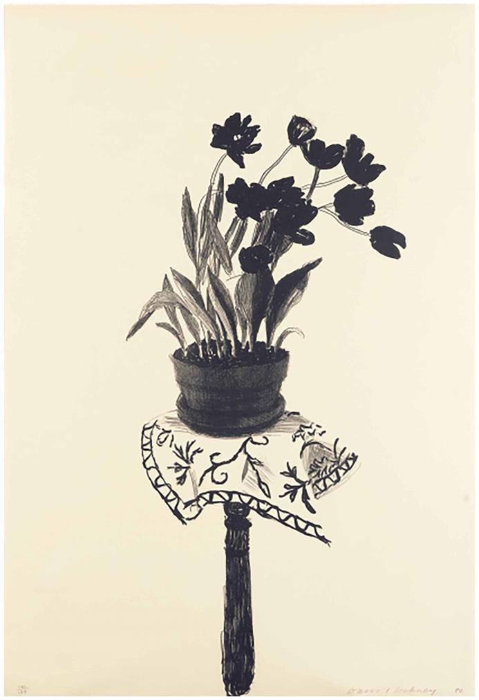 David Hockney-Black Tulips-1980