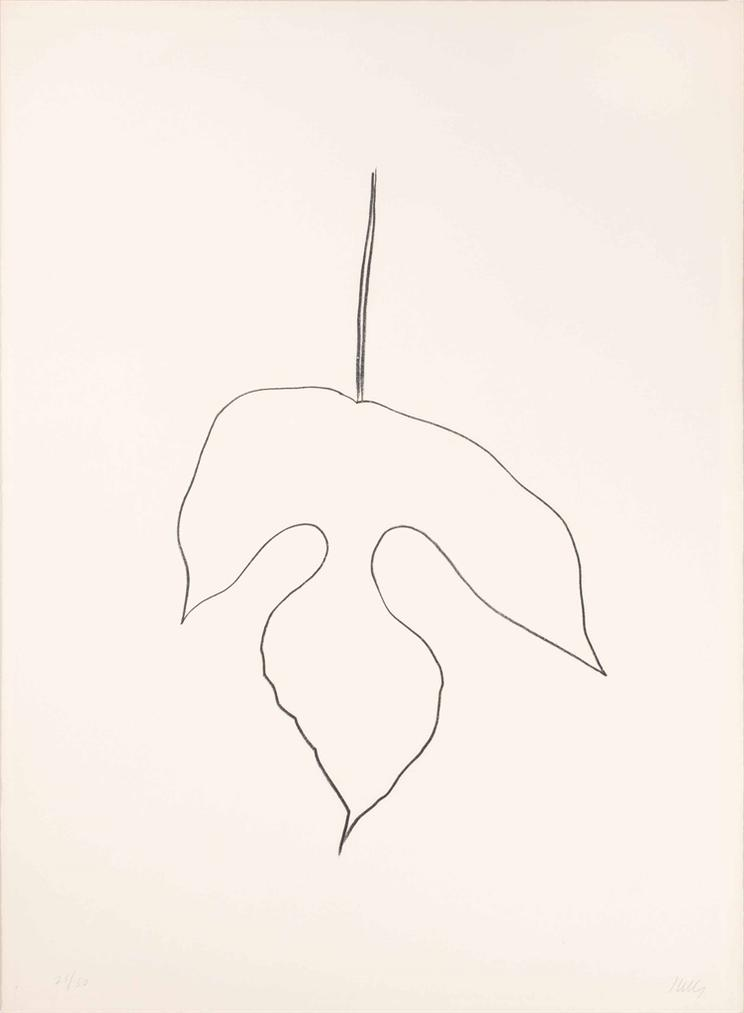 Ellsworth Kelly-Mulberry Leaf-1980