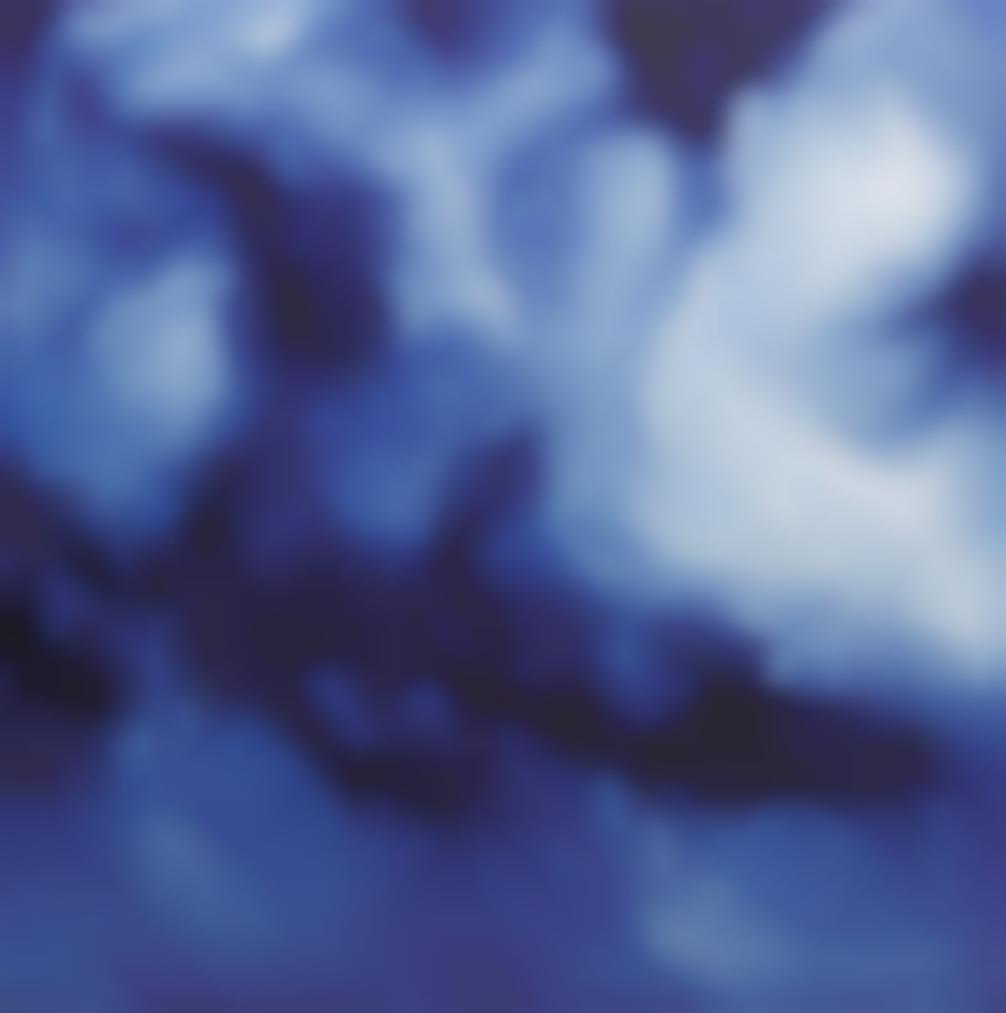 Zhao Zhao-Sky No.12-2013