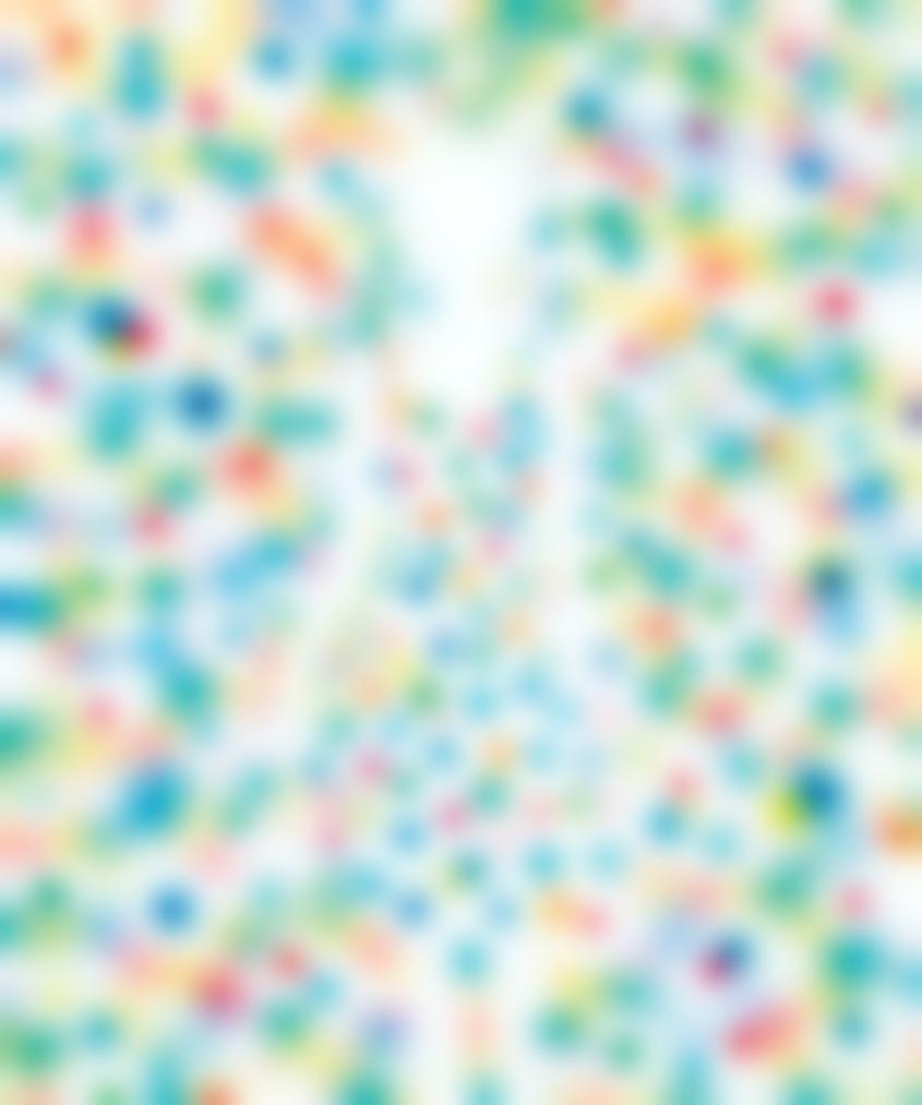 Tomoya Tsukamoto-Red Yellow Blue (Dot Girl)-2013