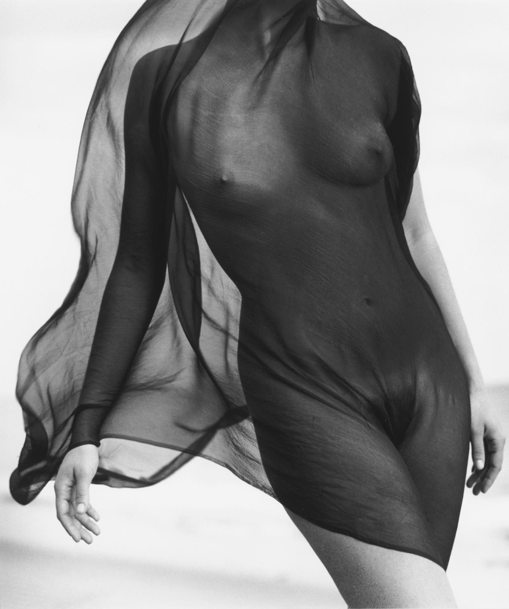 Herb Ritts-Female Torso With Veil, Paradise Cove-1984