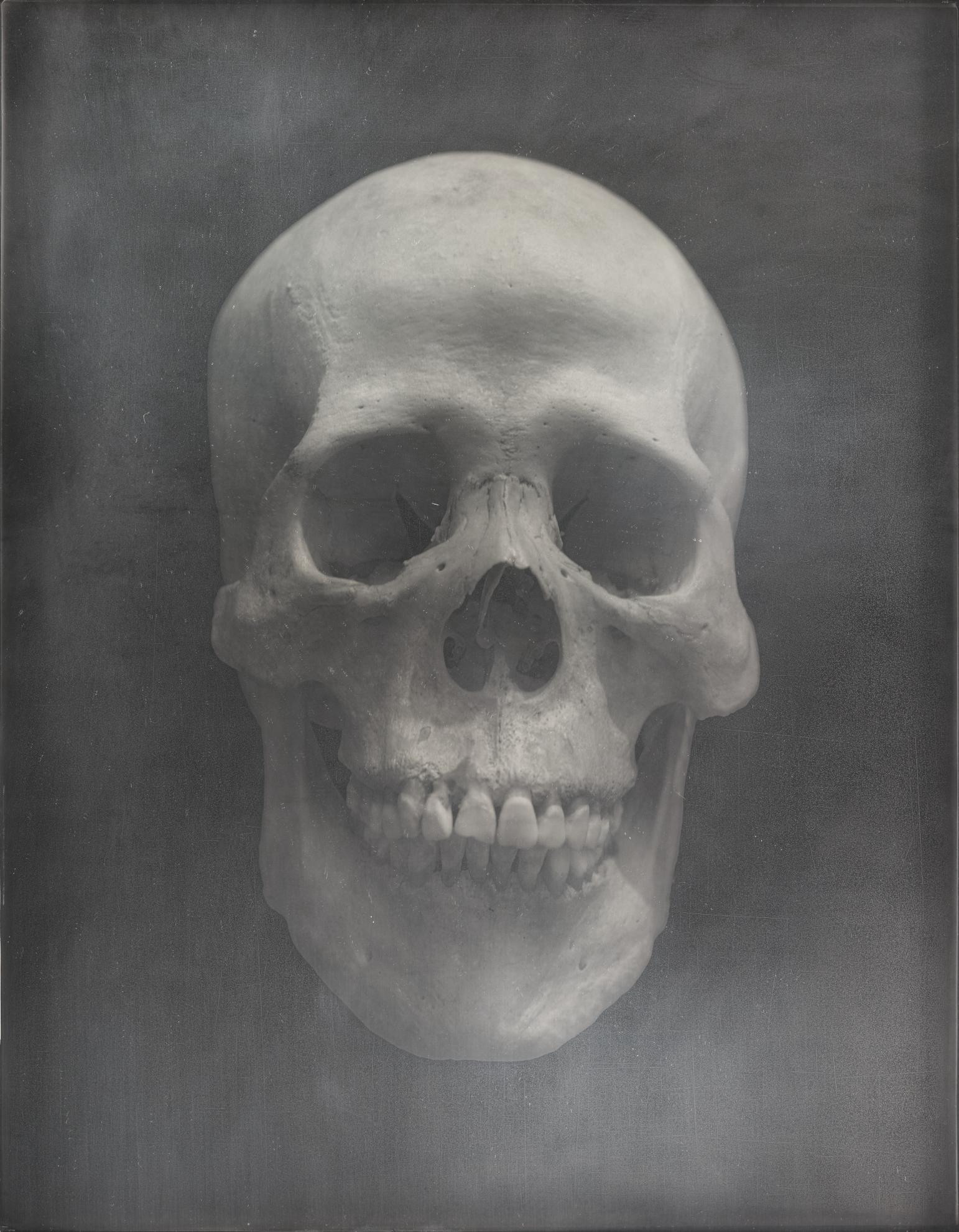 Adam Fuss-Skull-2005