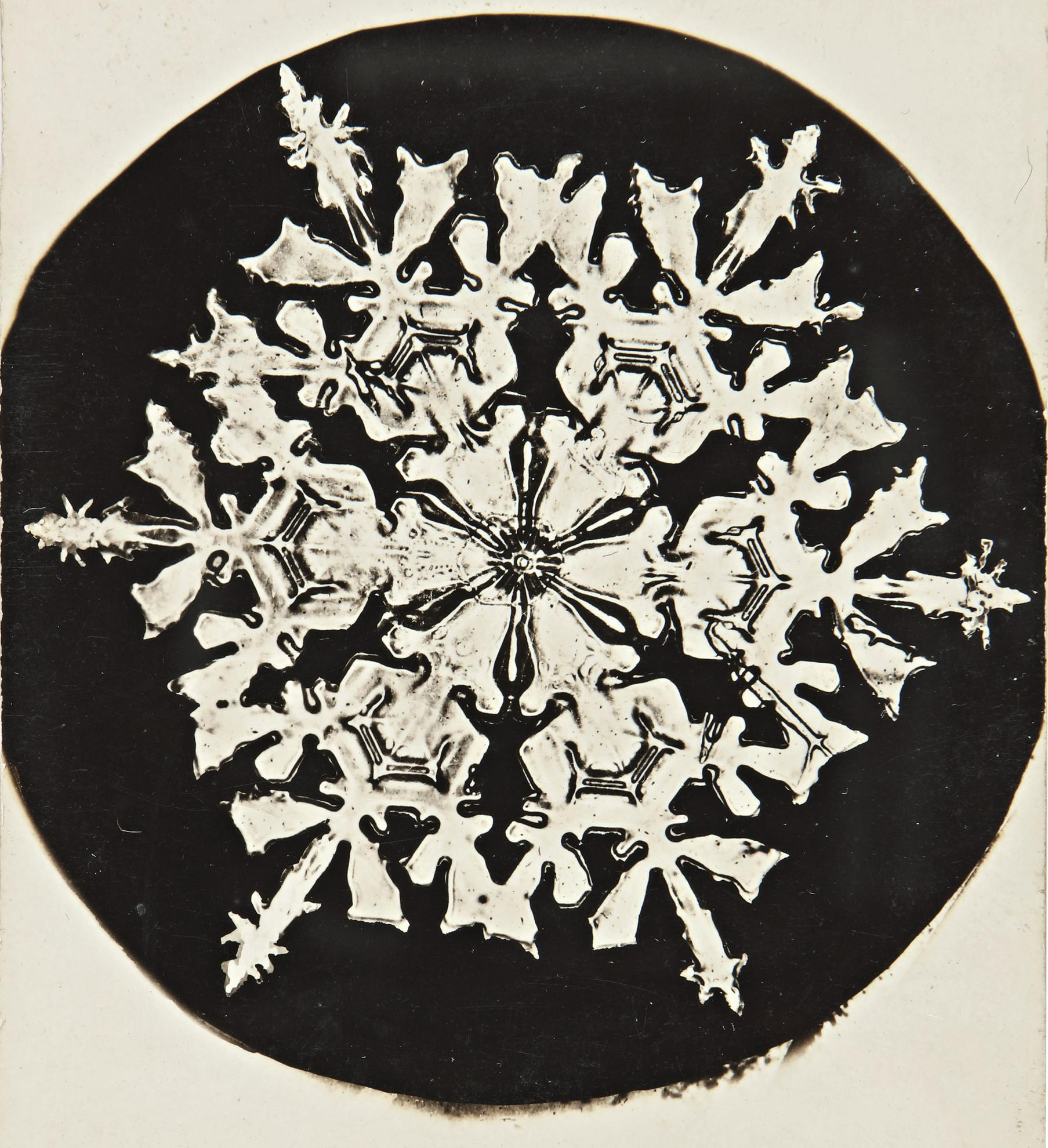 Wilson A. Bentley-Selected Images Of Snowflakes-1920