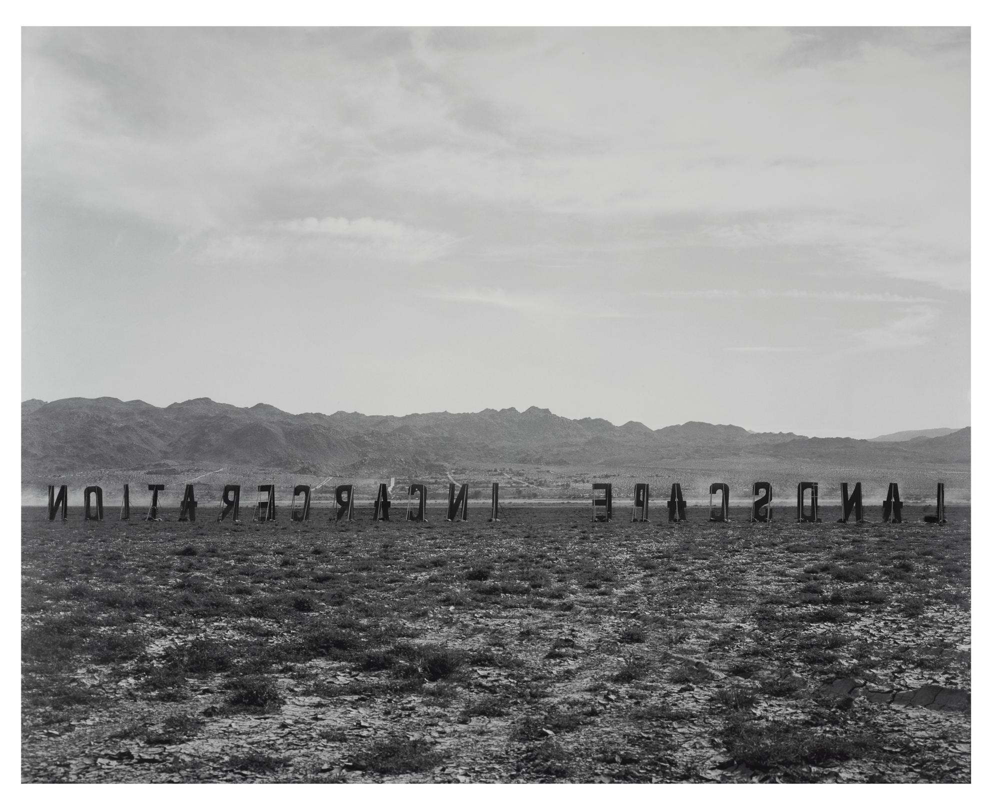 Shannon Ebner-Landscape Incarceration-2003