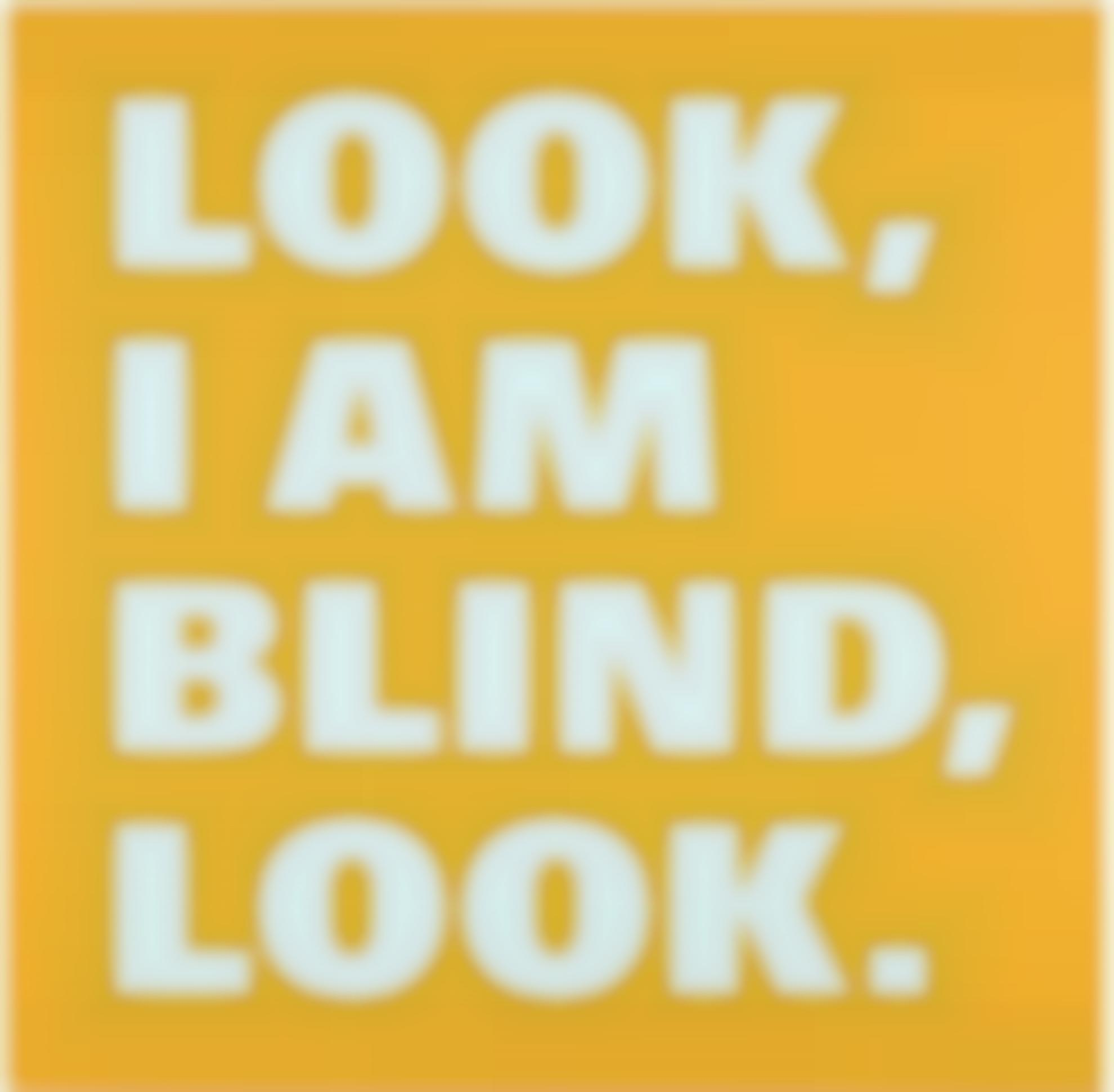 Remy Zaugg-Look/I Am/Blind/Look-1999