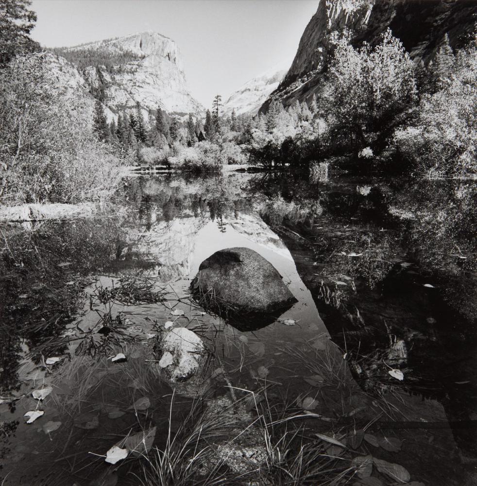 Lee Friedlander-Yosemite, National Park, California-2003