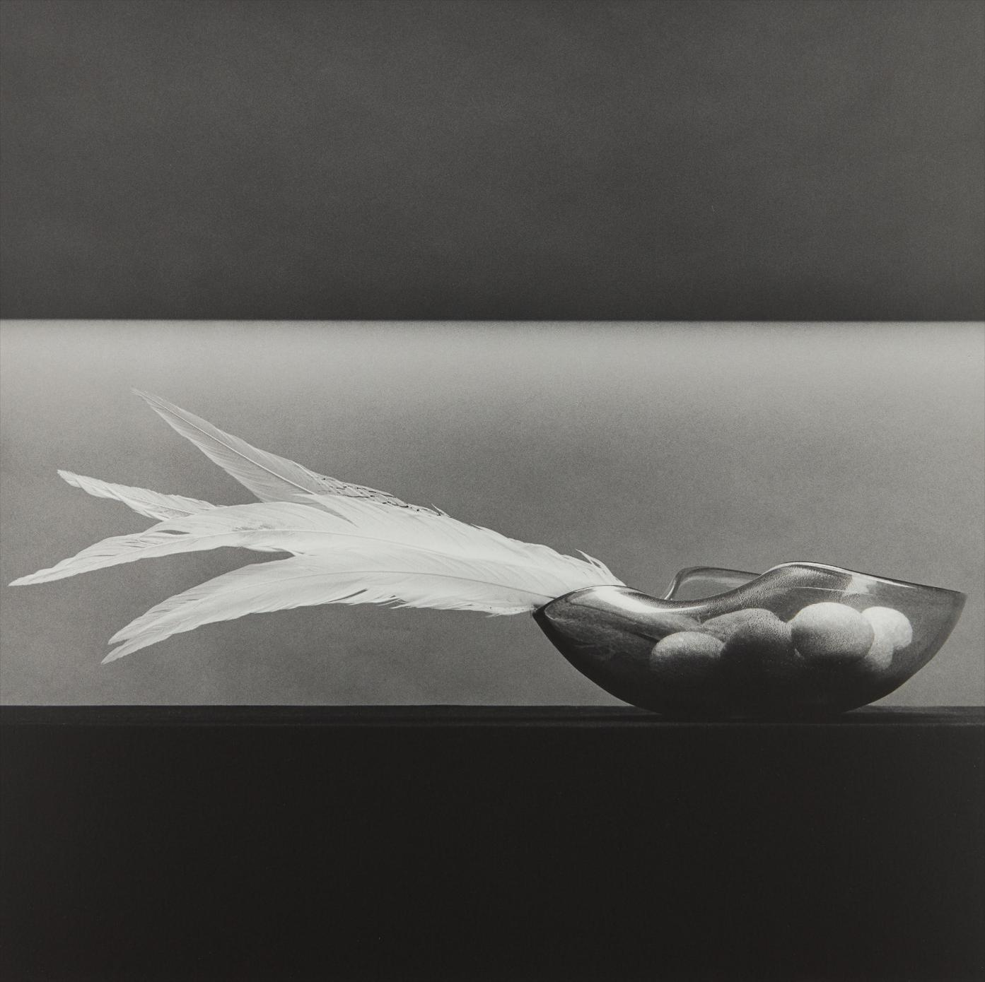 Robert Mapplethorpe-Feathers And Eggs-1985