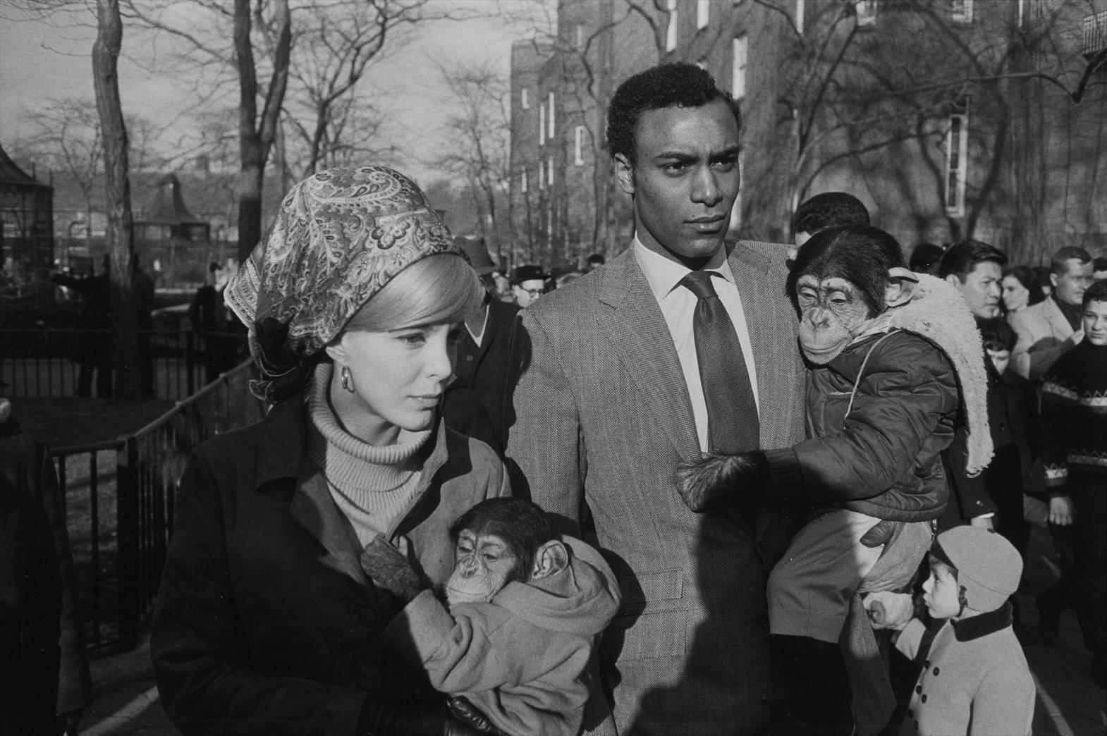 Garry Winogrand-Central Park Zoo, New York-1967