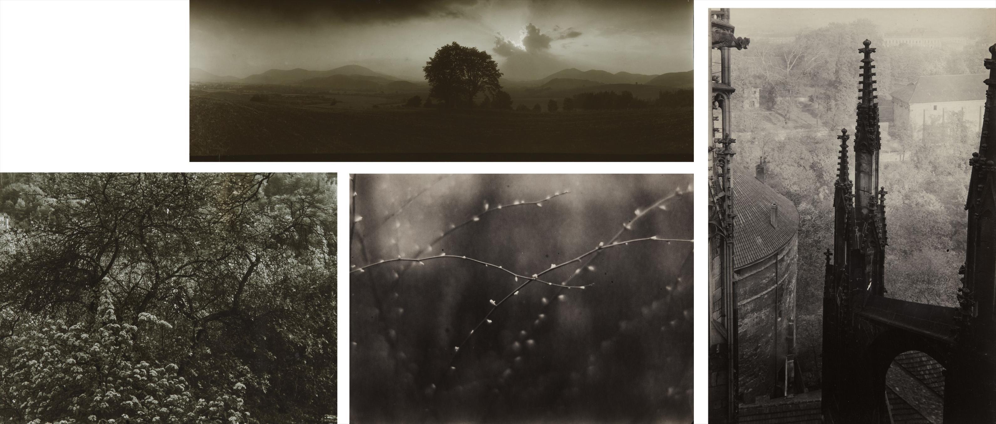 Josef Sudek-Selected Images-1973