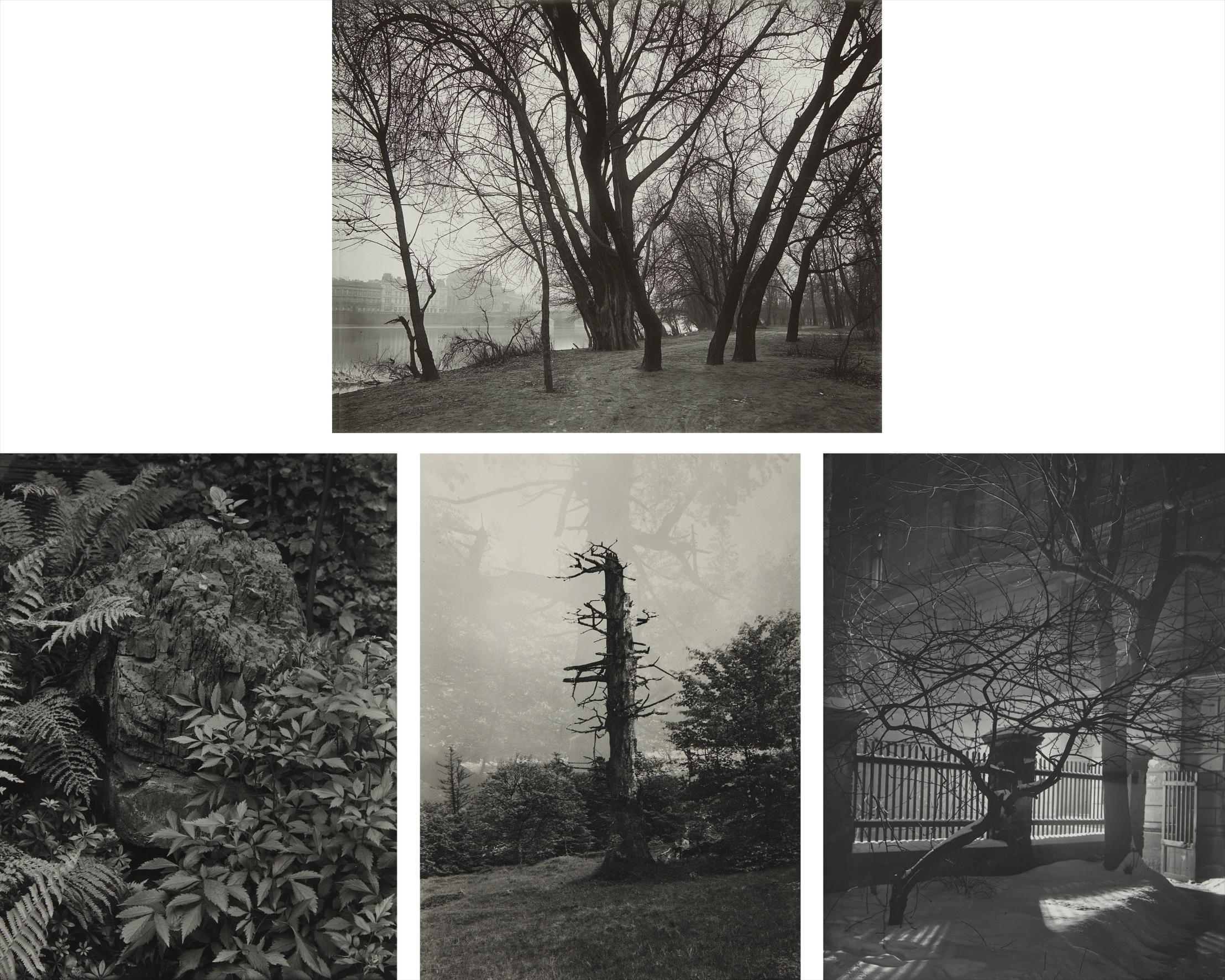 Josef Sudek-Selected Images-1950
