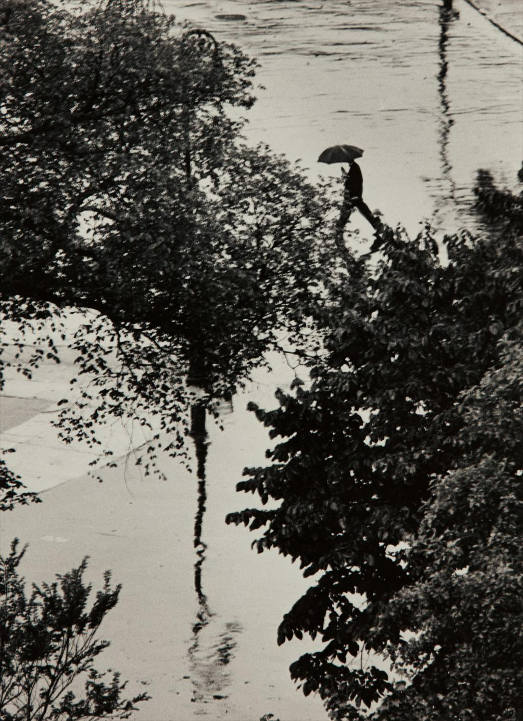 Andre Kertesz-Looking Through Trees At Man With Umbrella, August 2-1962