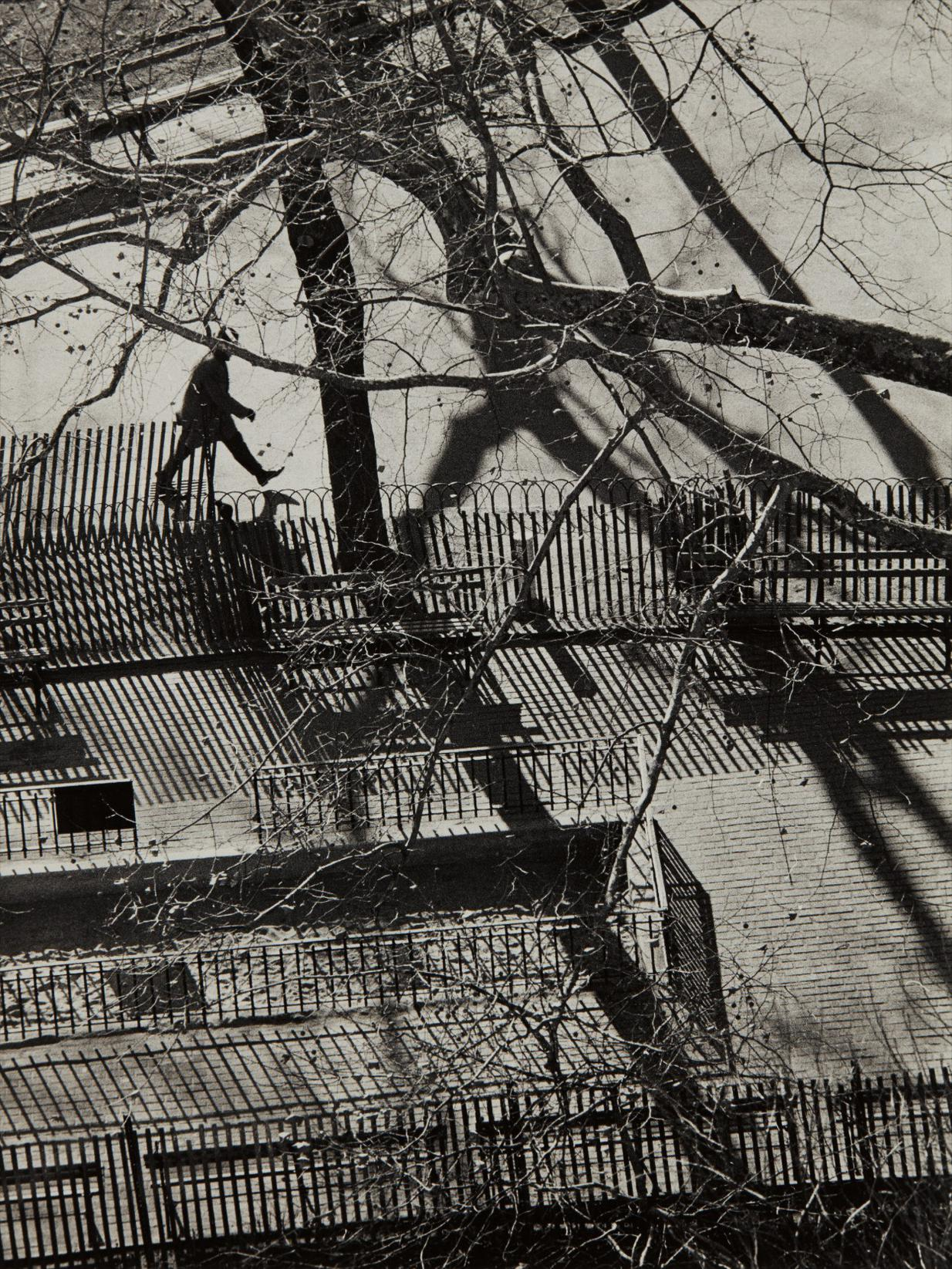Andre Kertesz-Washington Square Park, November 30-1971