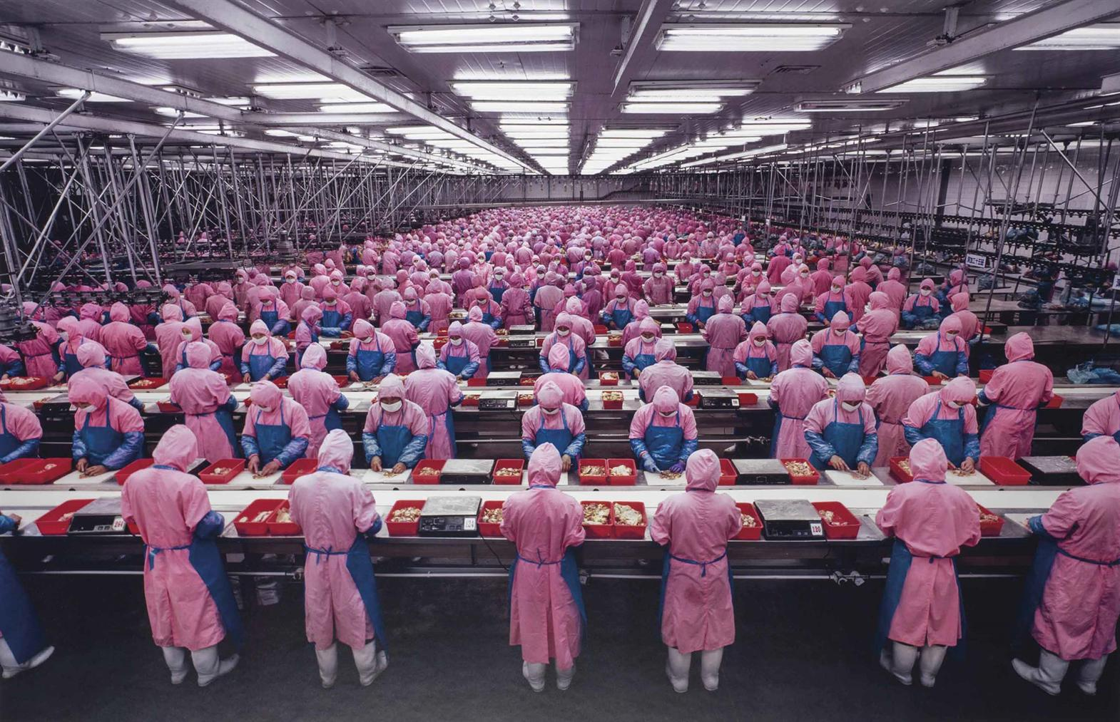 Edward Burtynsky-Manufacturing #17, Deda Chicken Processing Plant, Dehui City, Jilin Province, China-2005