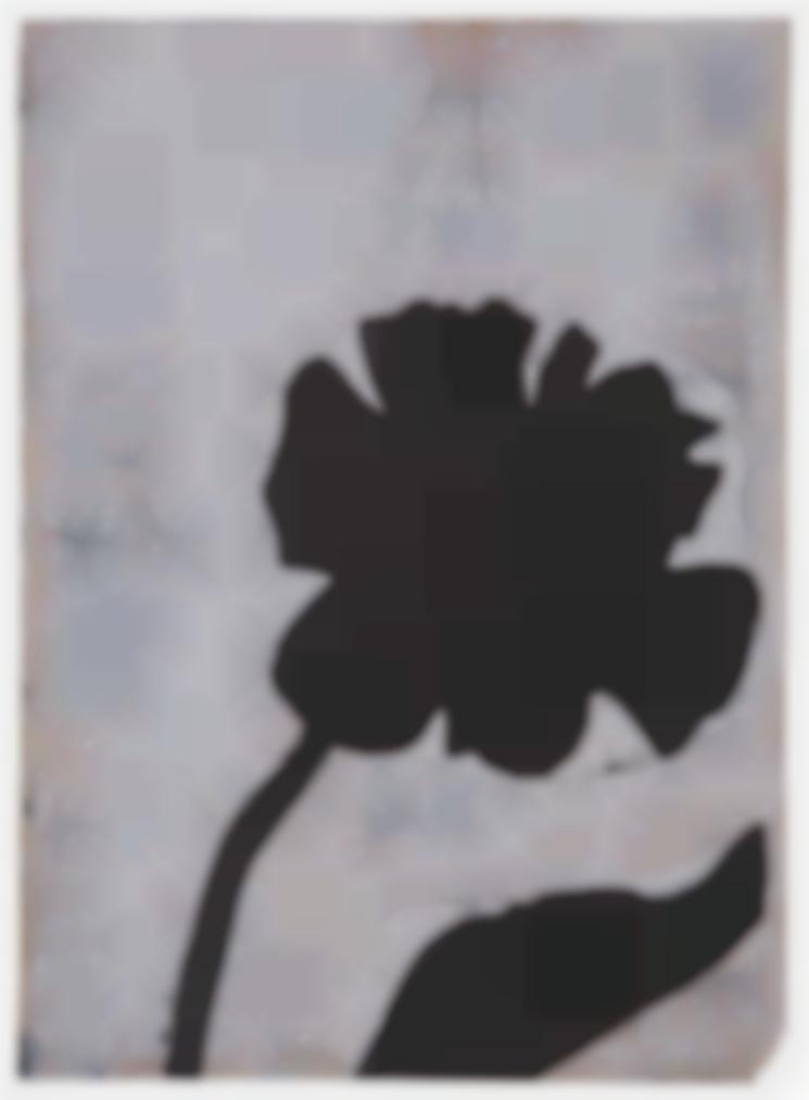 Jannis Kounellis-Il Fiore-1969