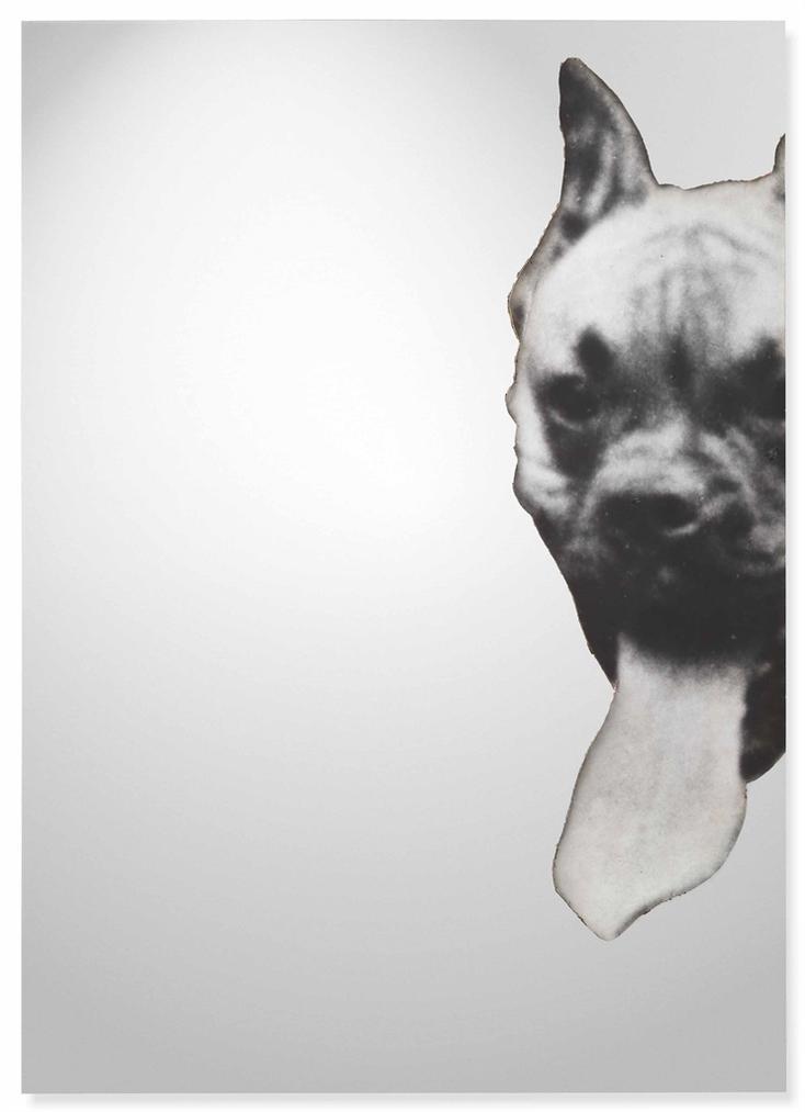 Michelangelo Pistoletto-Boxer-1968