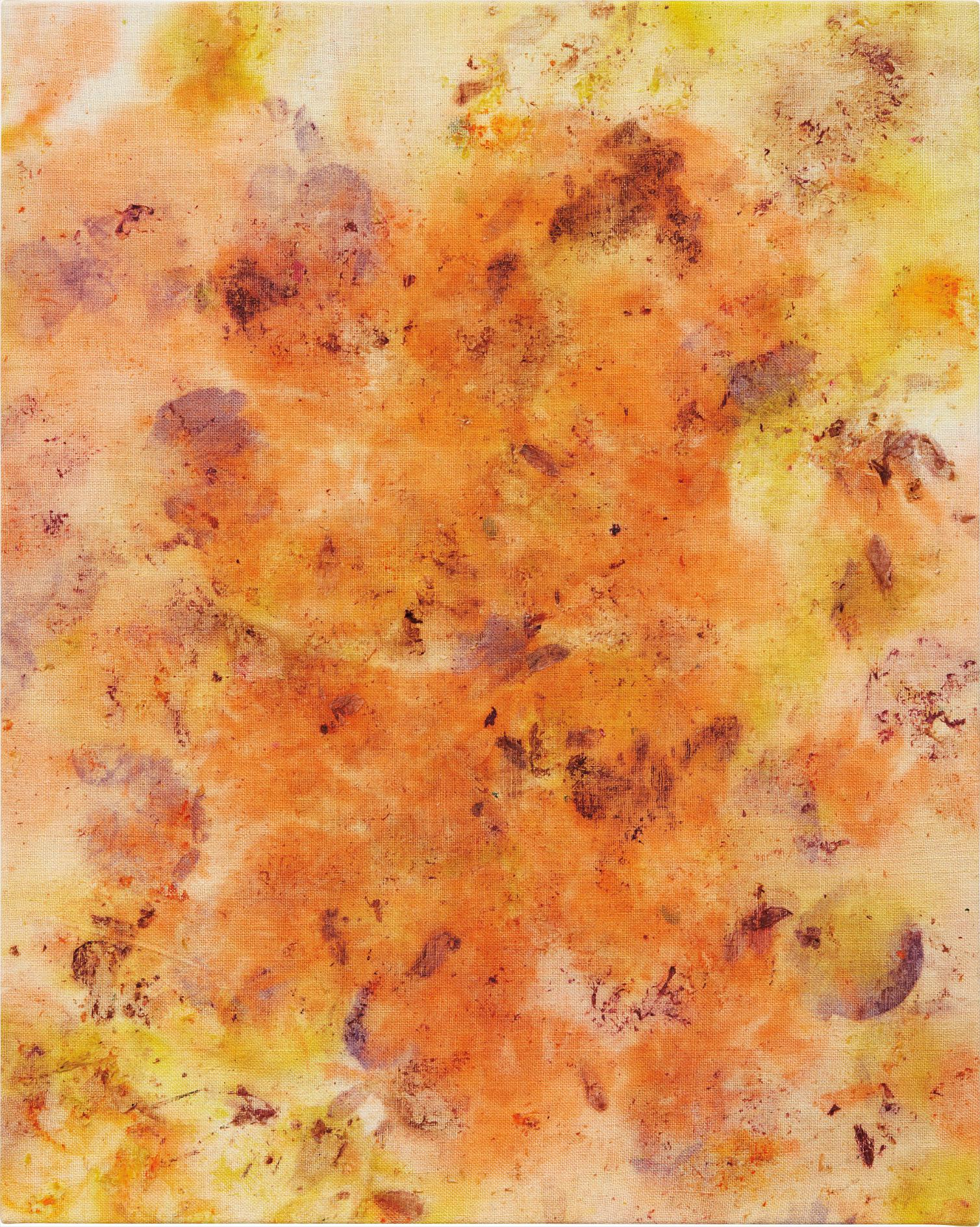 Dan Colen-Burn The House Down-2012