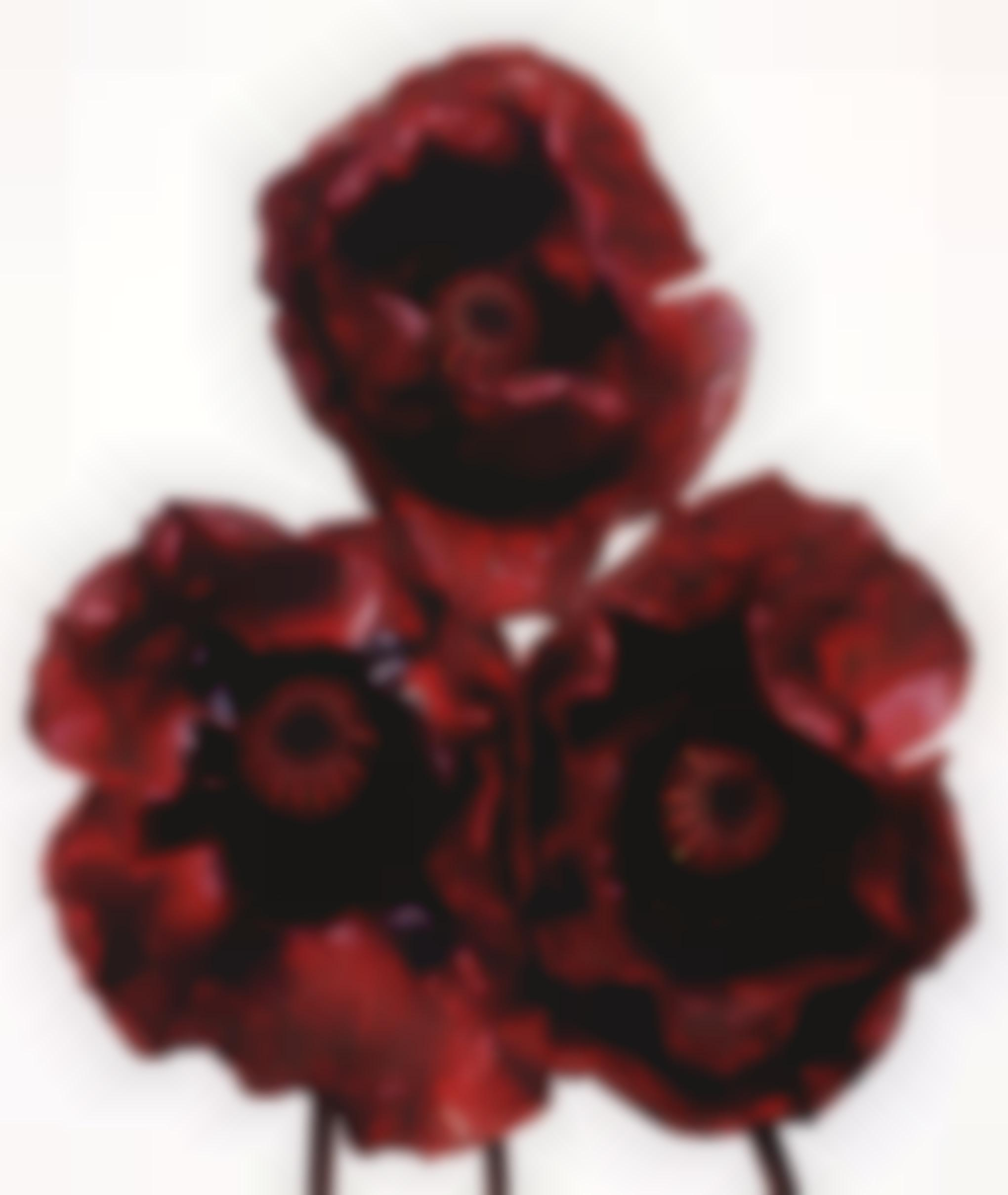 Irving Penn-Three Poppies, Arab Chief, New York-1969