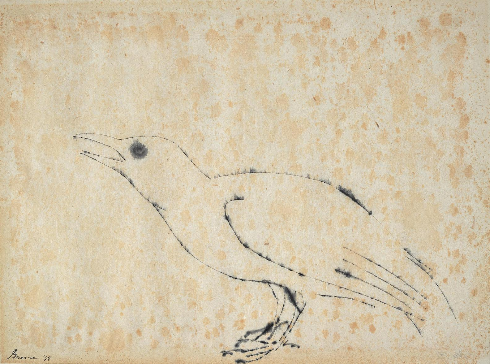 Morris Graves-Untitled (Bird)-1955