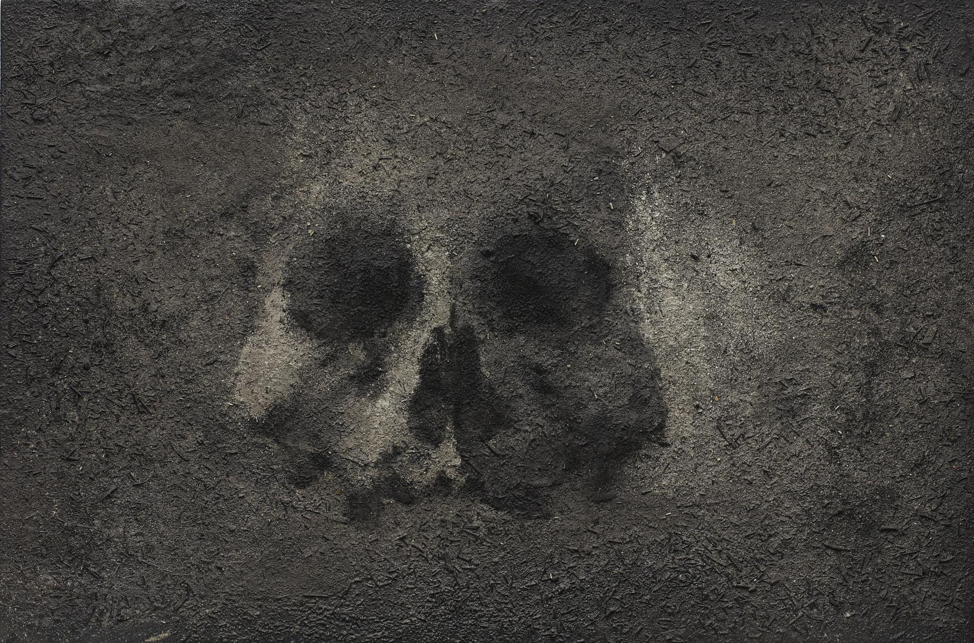 Zhang Huan-Skull-2007