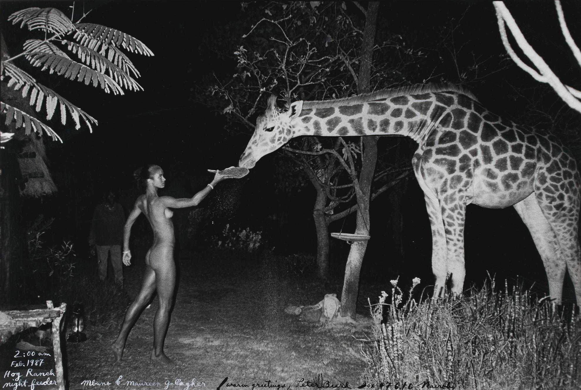 Peter Beard-Hog Ranch Front Lawn, Night Feeder (2:00 Am) With Maureen Gallagher & Mbuno, Feb. 1987-