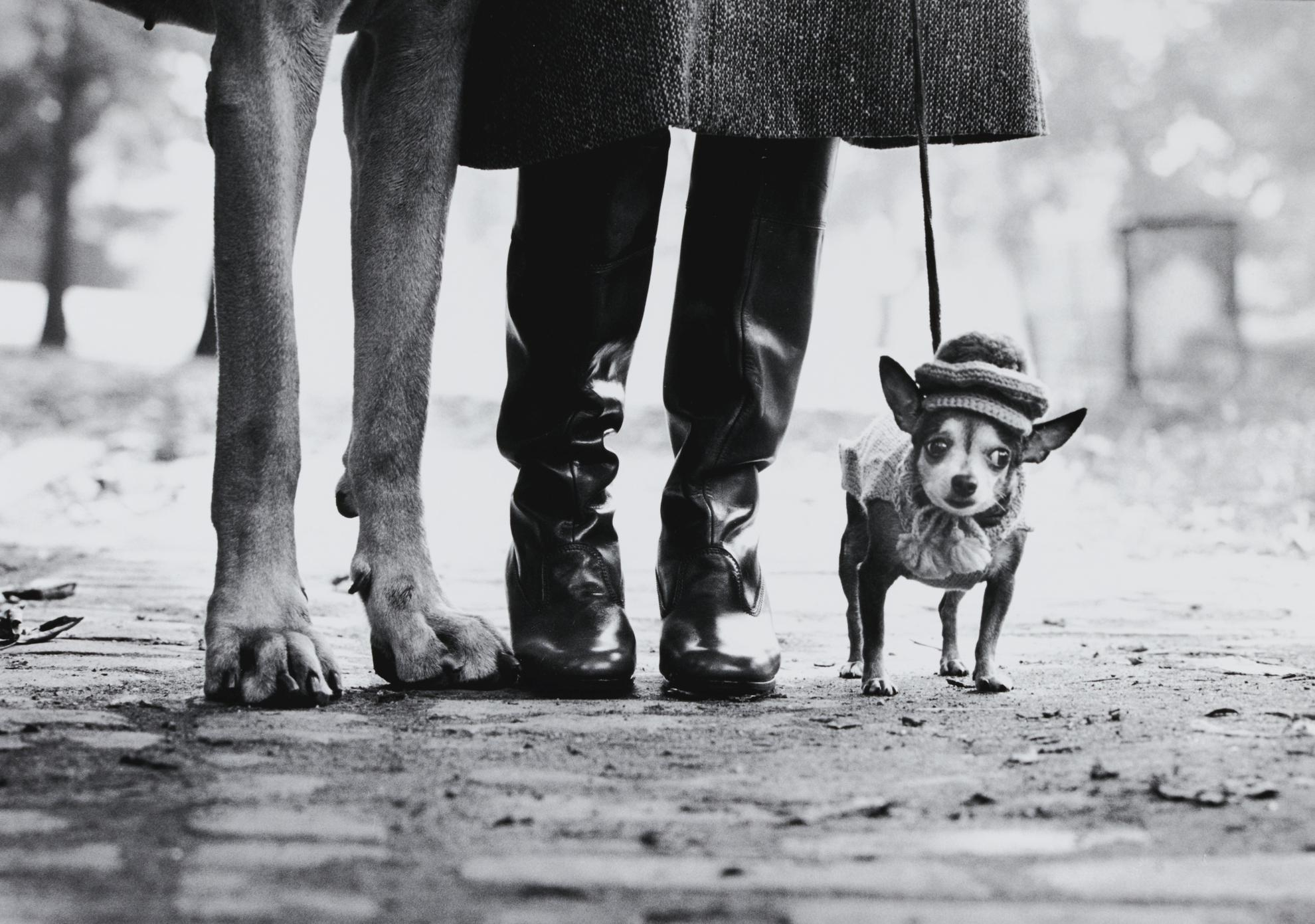 Elliott Erwitt-Felix, Gladys, And Rover-1974