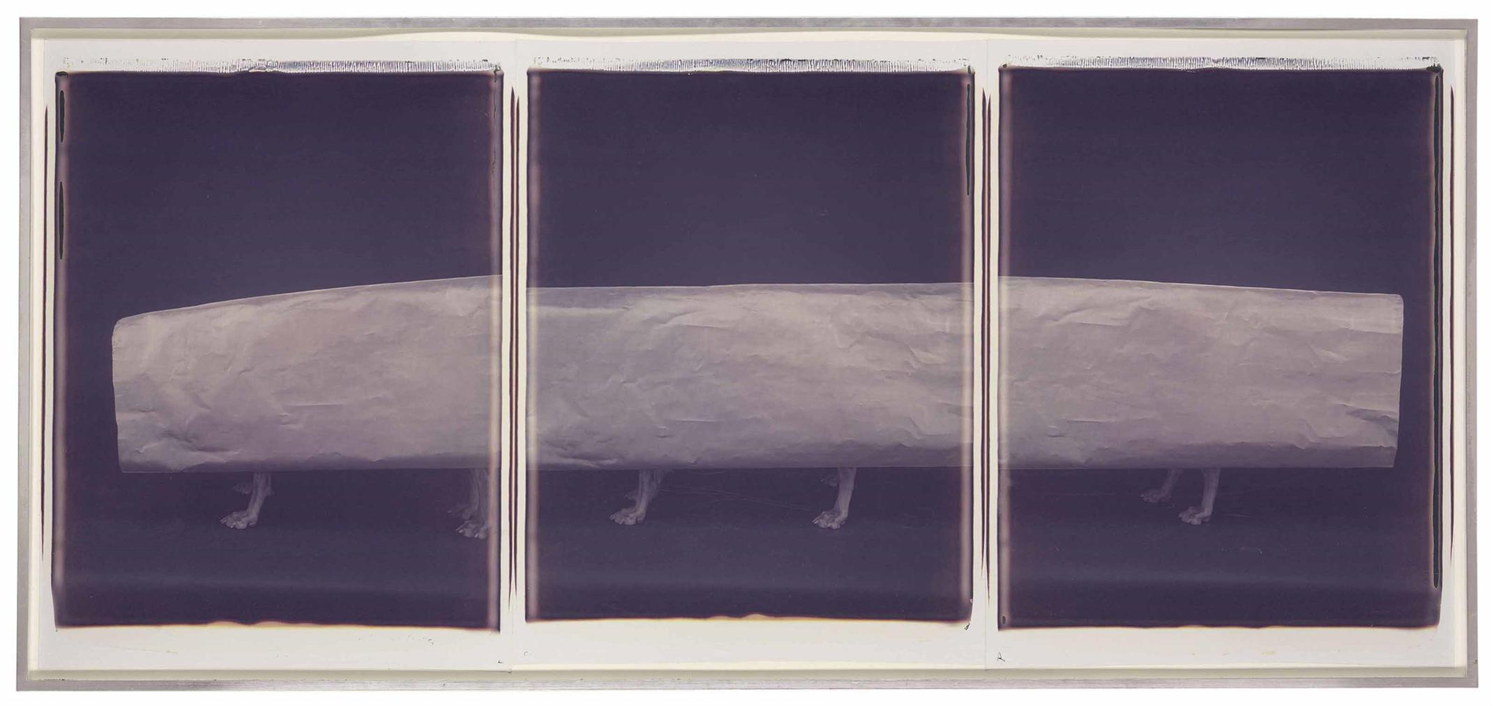 William Wegman-Pipeline-1989