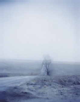 Todd Hido-Untitled #5157-2006