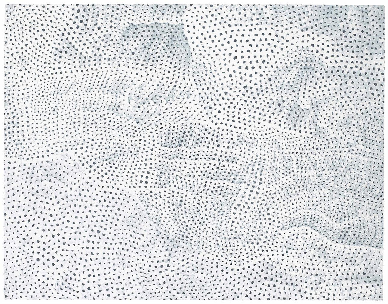 Yayoi Kusama-Infinity-Nets [Towz]-2005