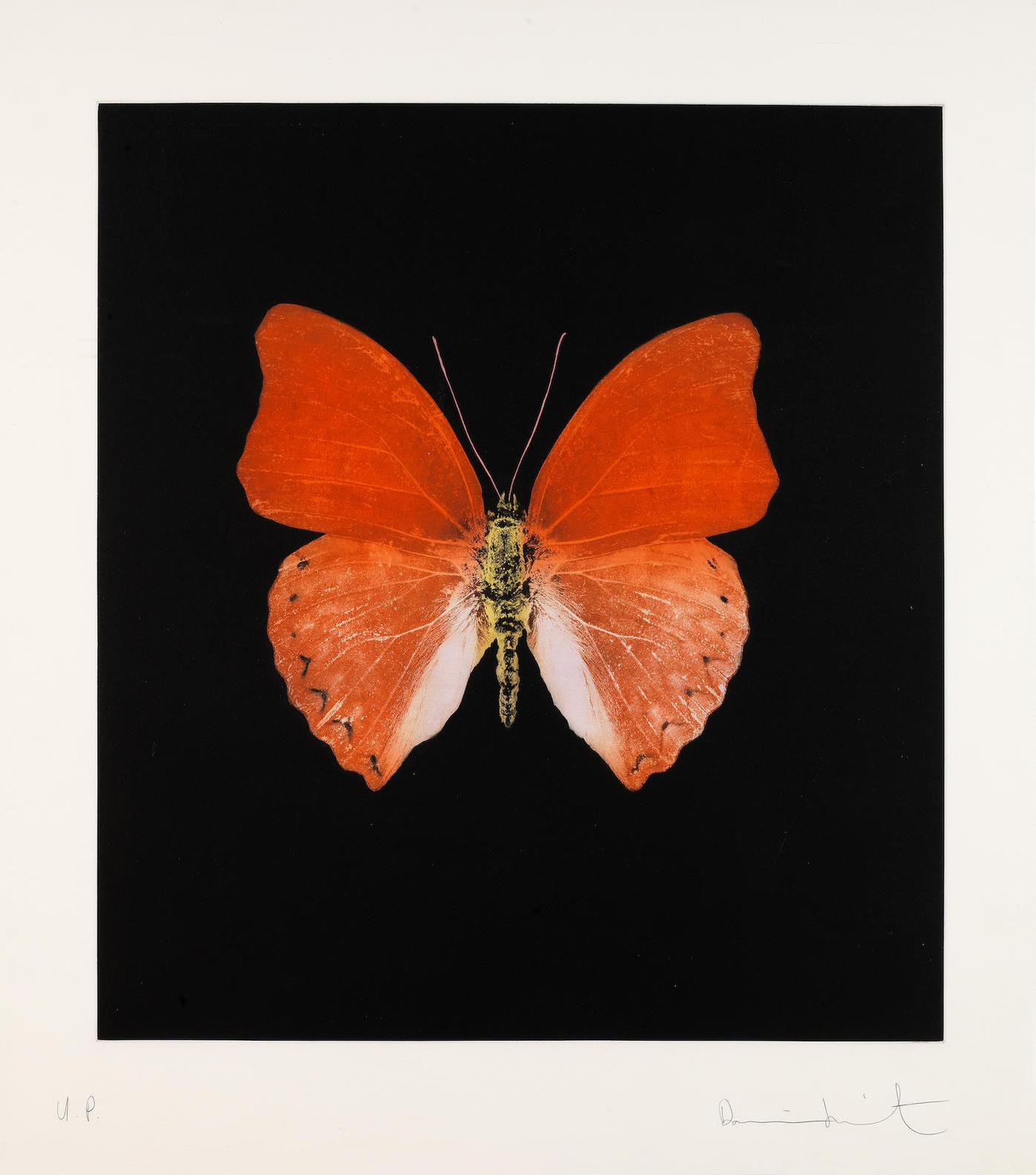 Damien Hirst-Orange Butterfly-2008