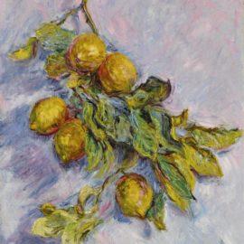 Claude Monet-Citrons Sur Une Branche-1884