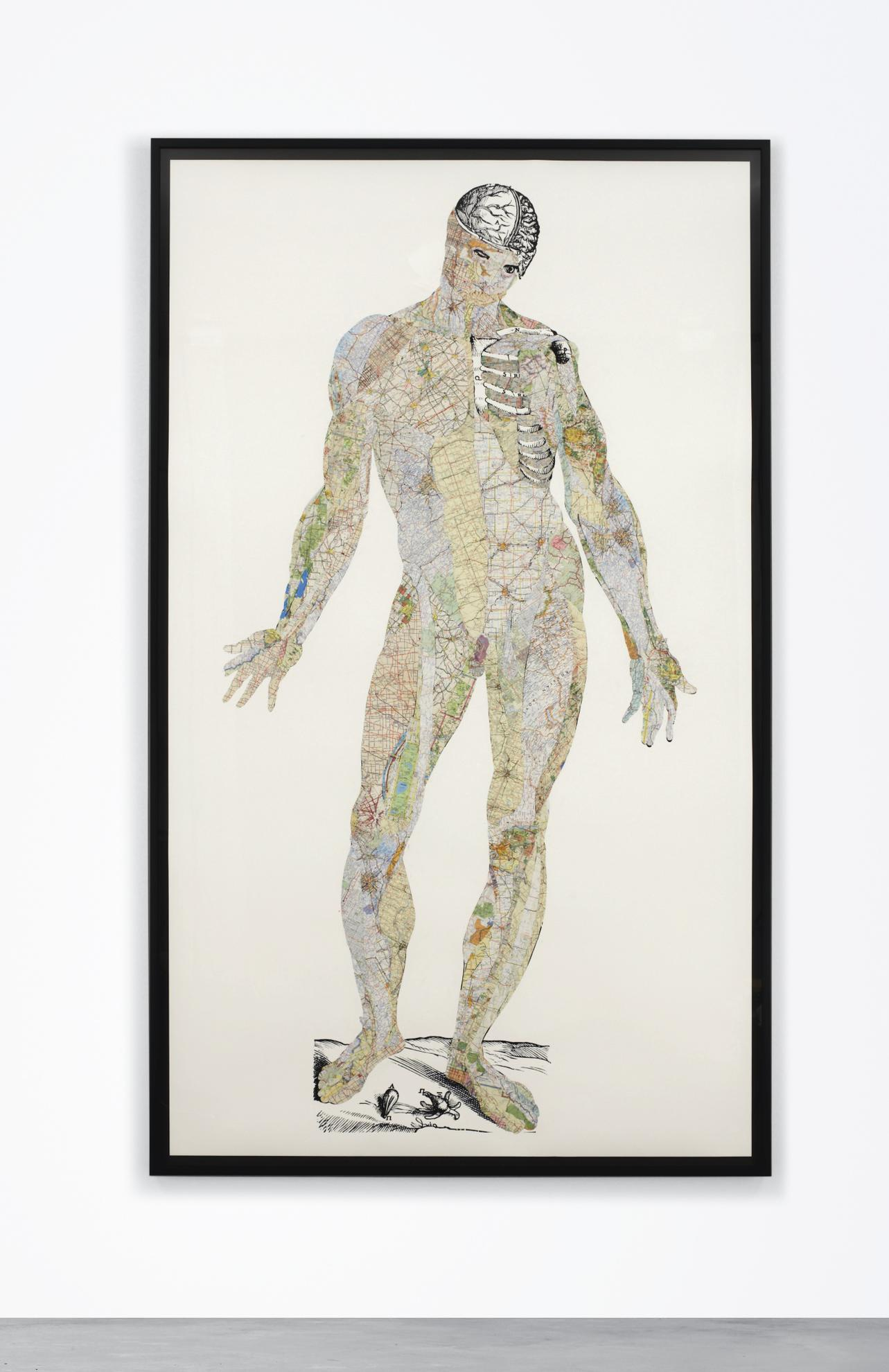 Matthew Day Jackson-Anatomical Drawing (Terra = Muscles)-2011