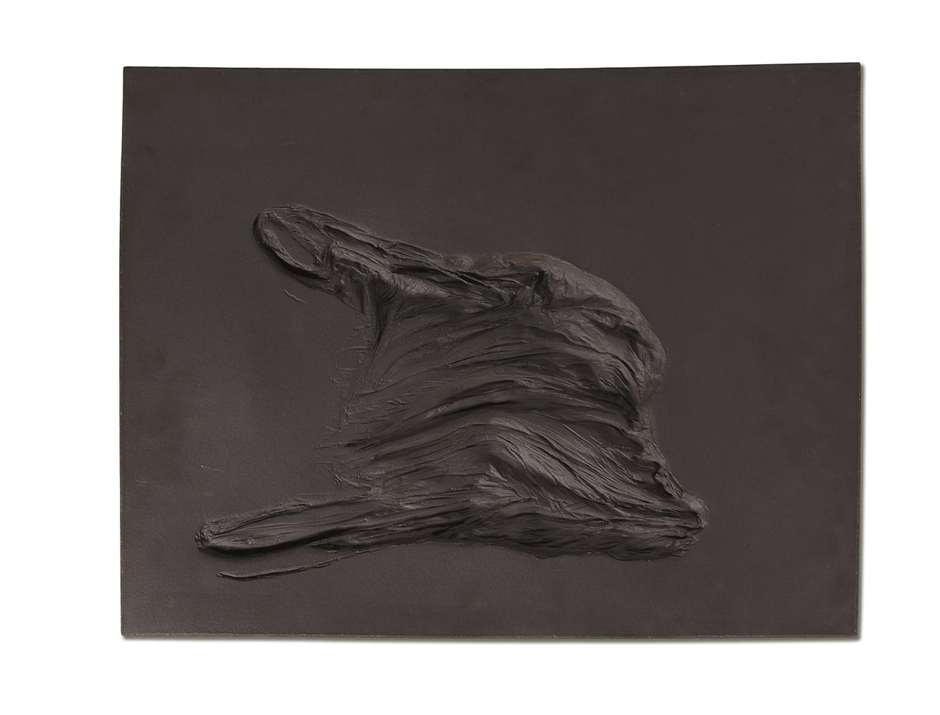 Camille Henrot-Haut Relief (14)-2008
