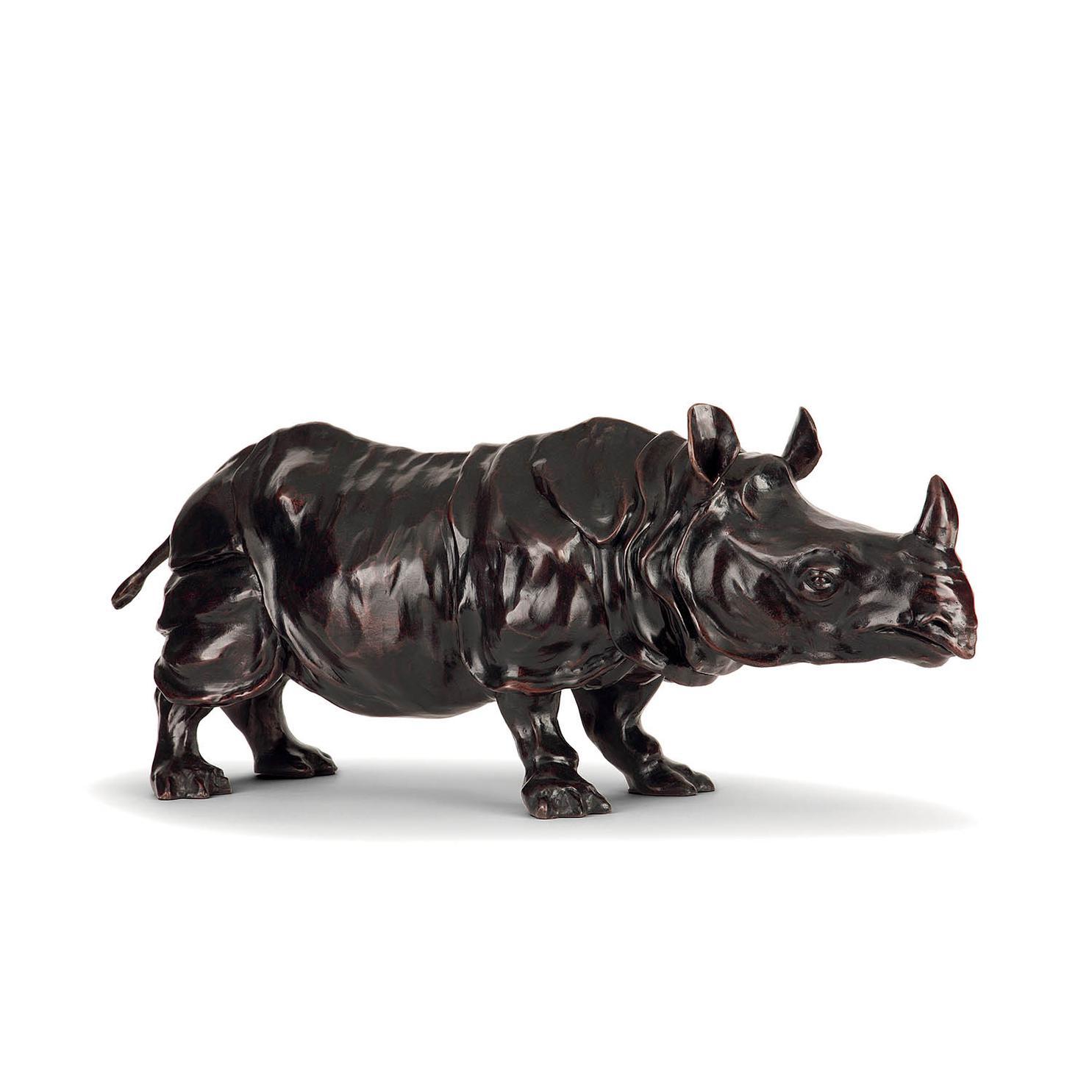 Jose Maria David-Rhinoceros-