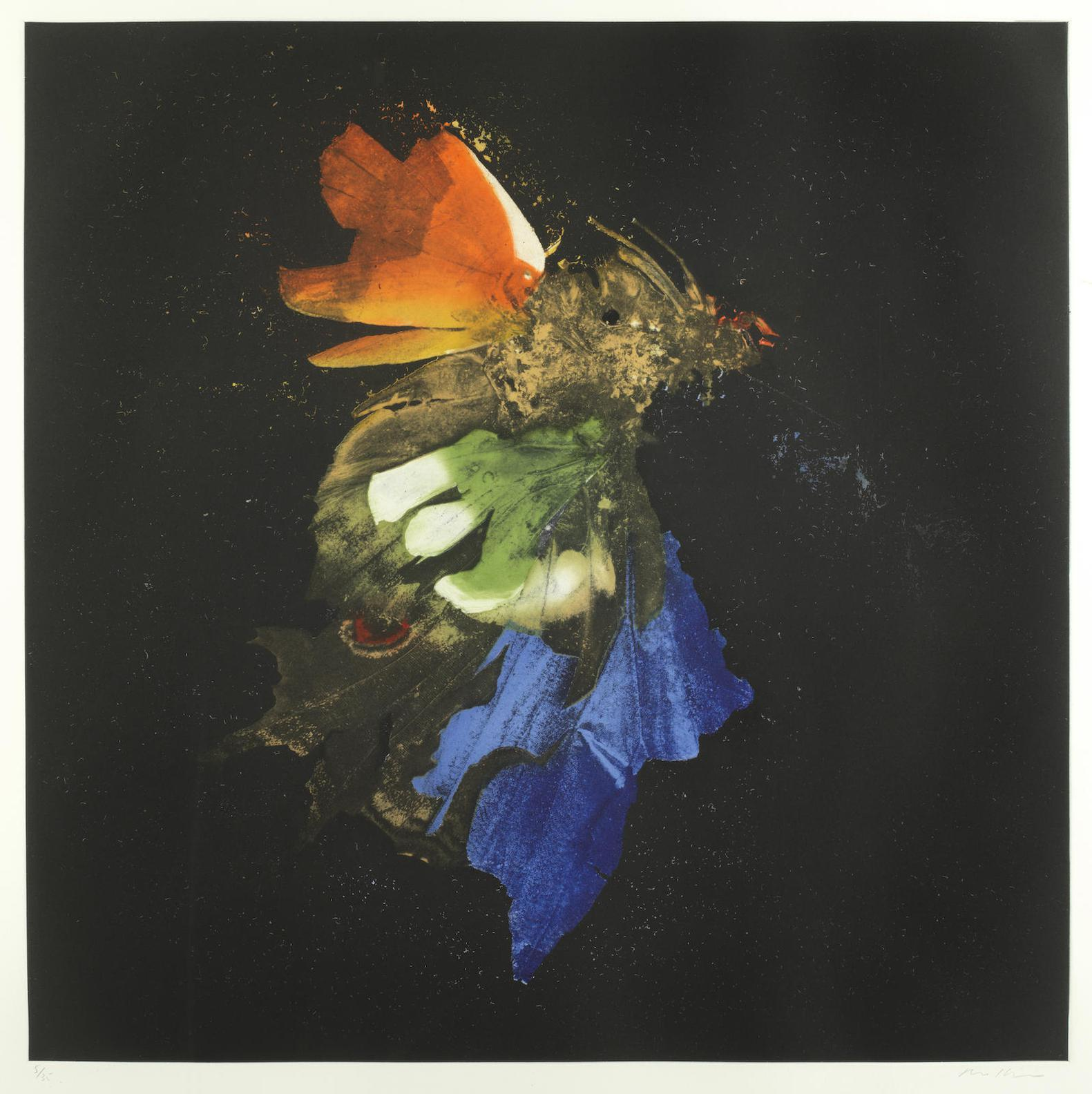Mat Collishaw-Insecticide 15-2010