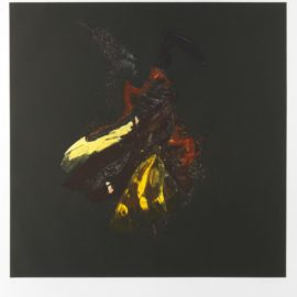Mat Collishaw-Insecticide 18-2010