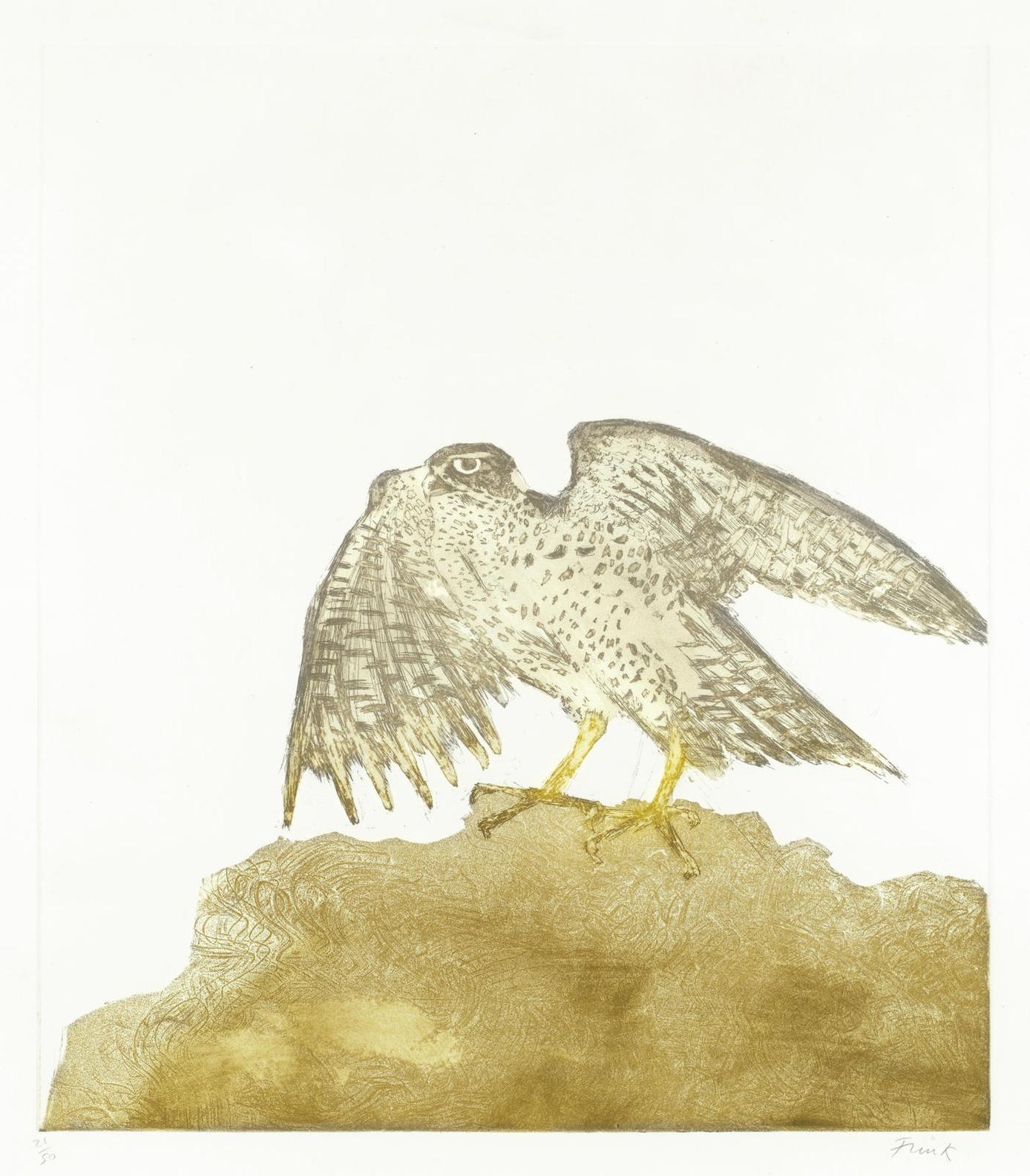 Elisabeth Frink-Goshawk, From Birds Of Prey (Wiseman 107)-1974
