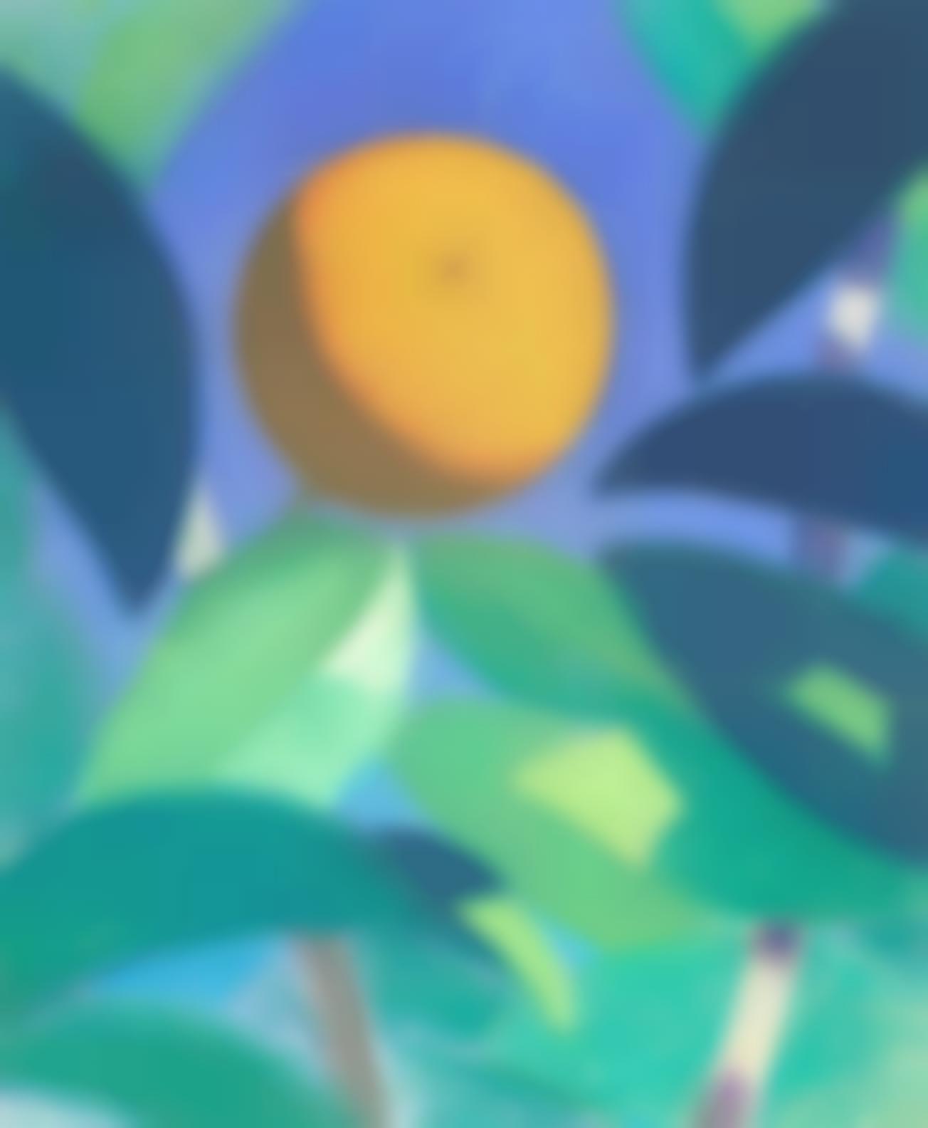 Simon Albert Bussy-Orange-