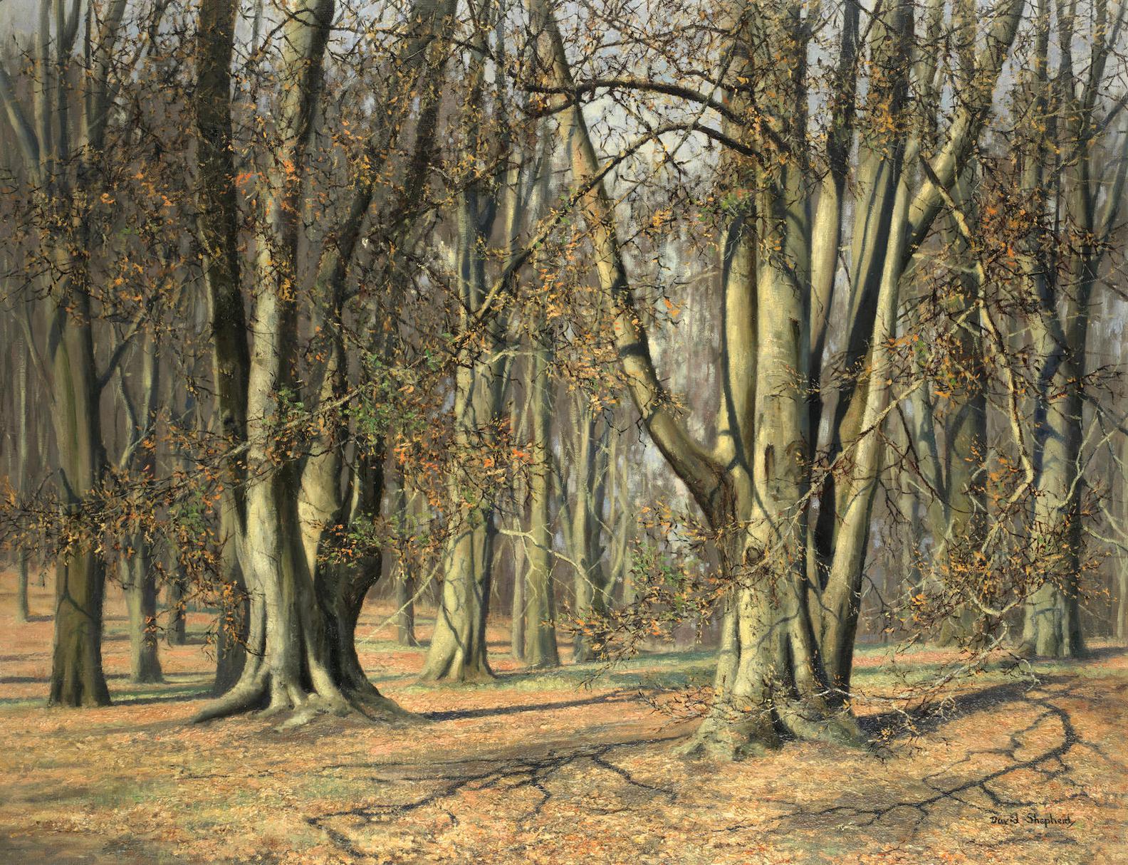 David Shepherd - Spring In Windsor Great Park-